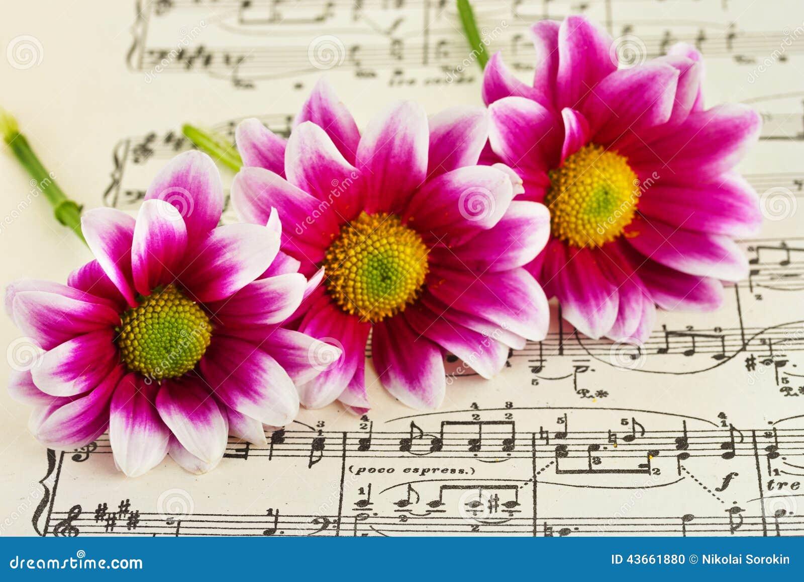 Flores En M 250 Sica De Hoja Foto De Archivo Imagen 43661880
