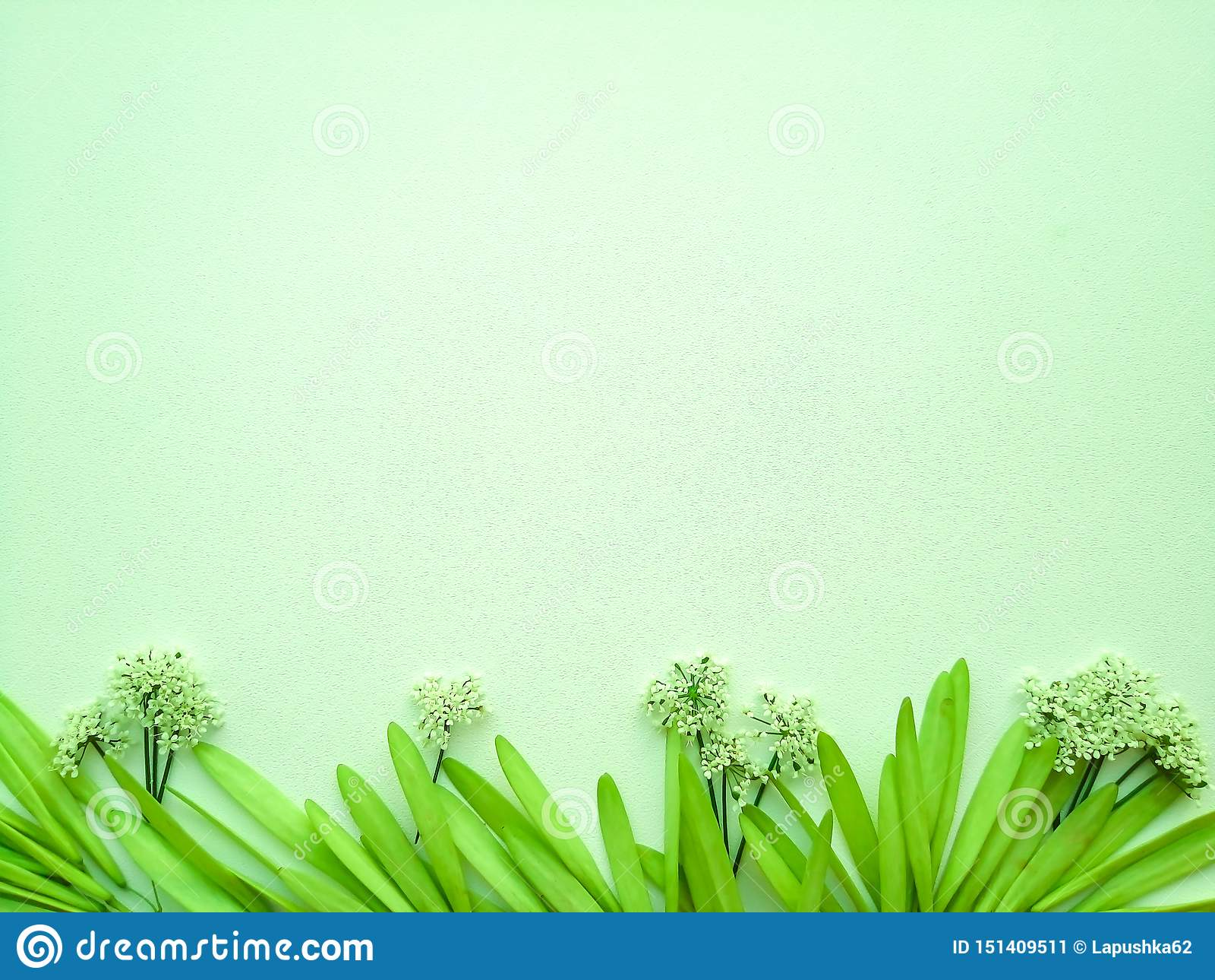 Flores en un fondo verde