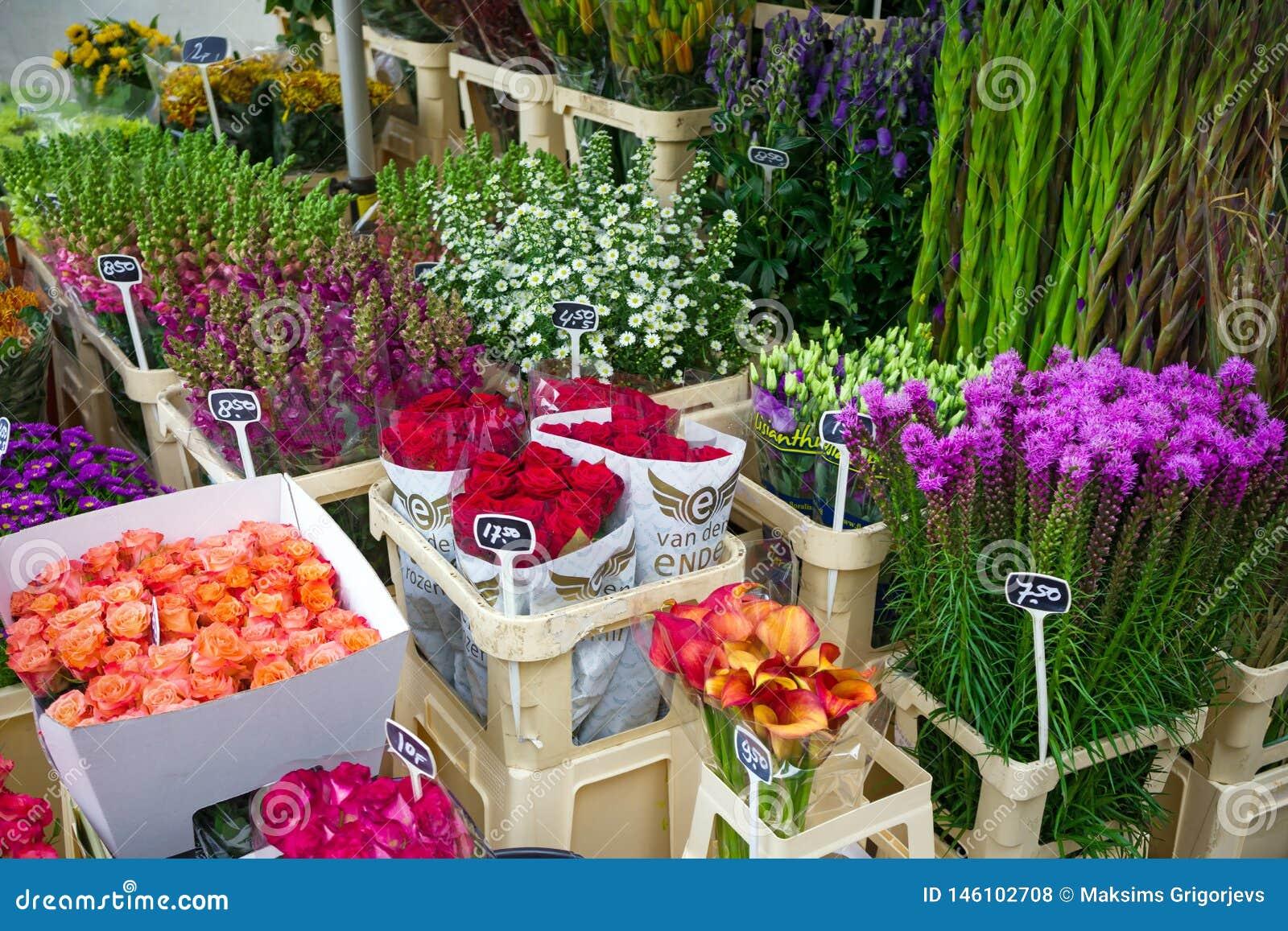 Flores en venta en un mercado holandés de la flor, Amsterdam, los Países Bajos, el 12 de octubre de 2017