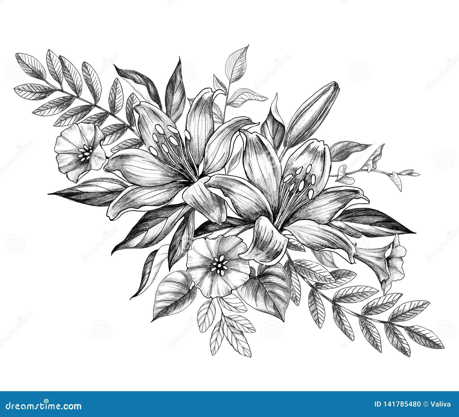 Flores Exhaustas Del Lirio Y De La Enredadera De La Mano