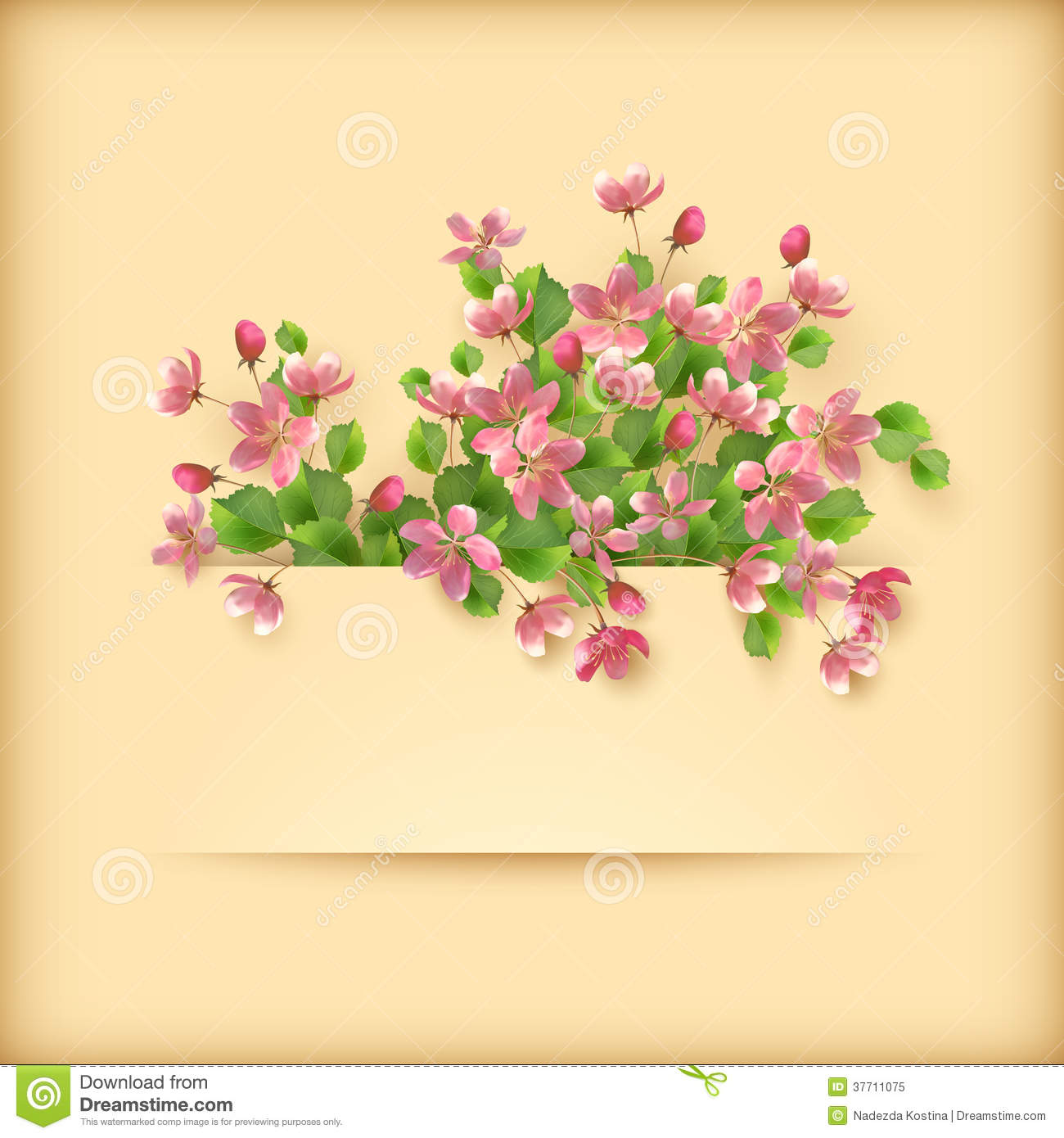 Greeting Card with Pink Flowers