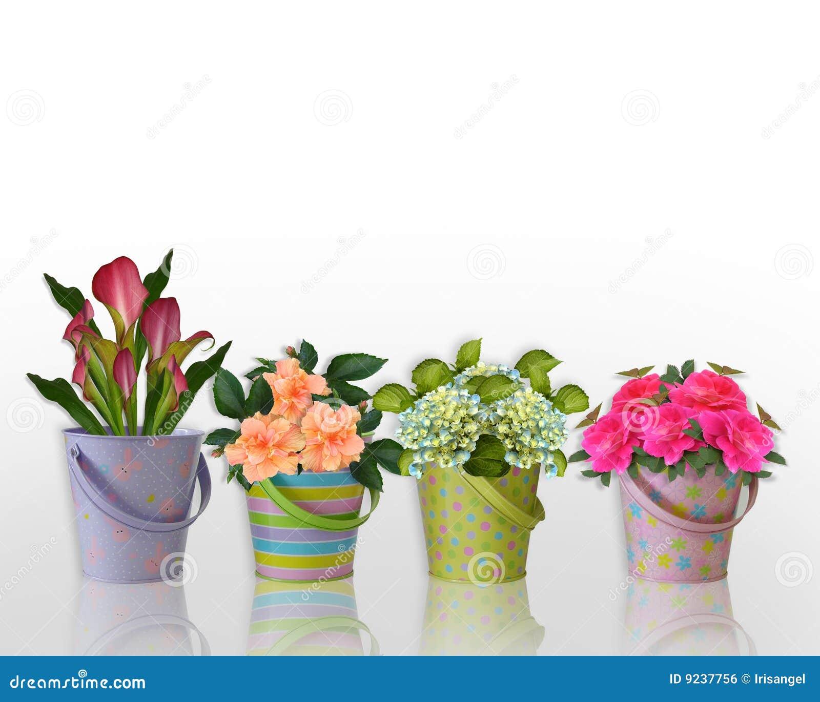 Flores florales de la frontera en envases coloridos