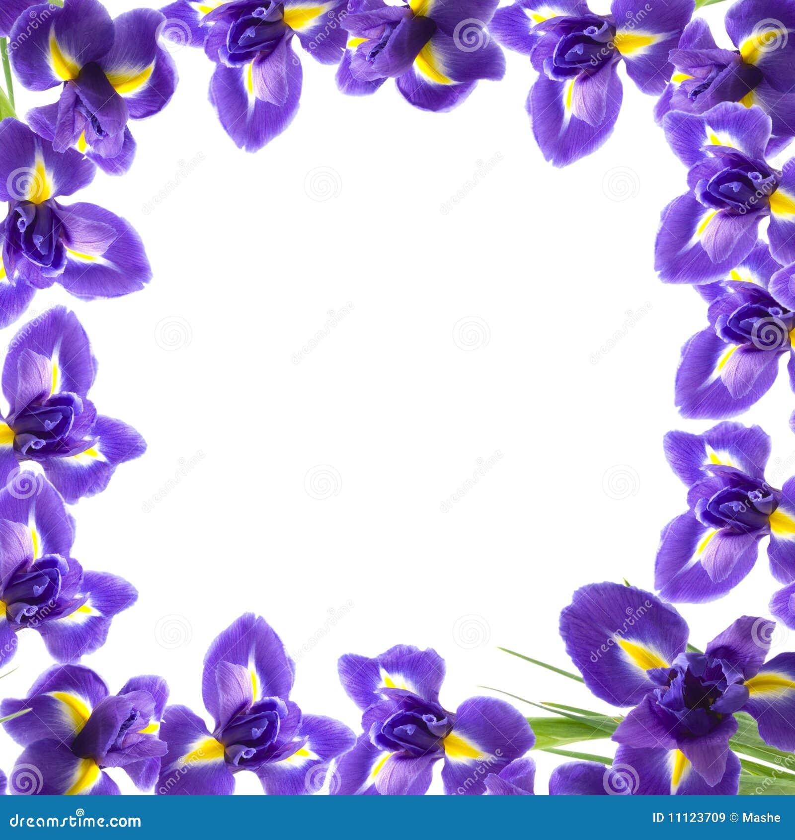 Encantador Flores Frescas Para Colorear Modelo - Dibujos Para ...