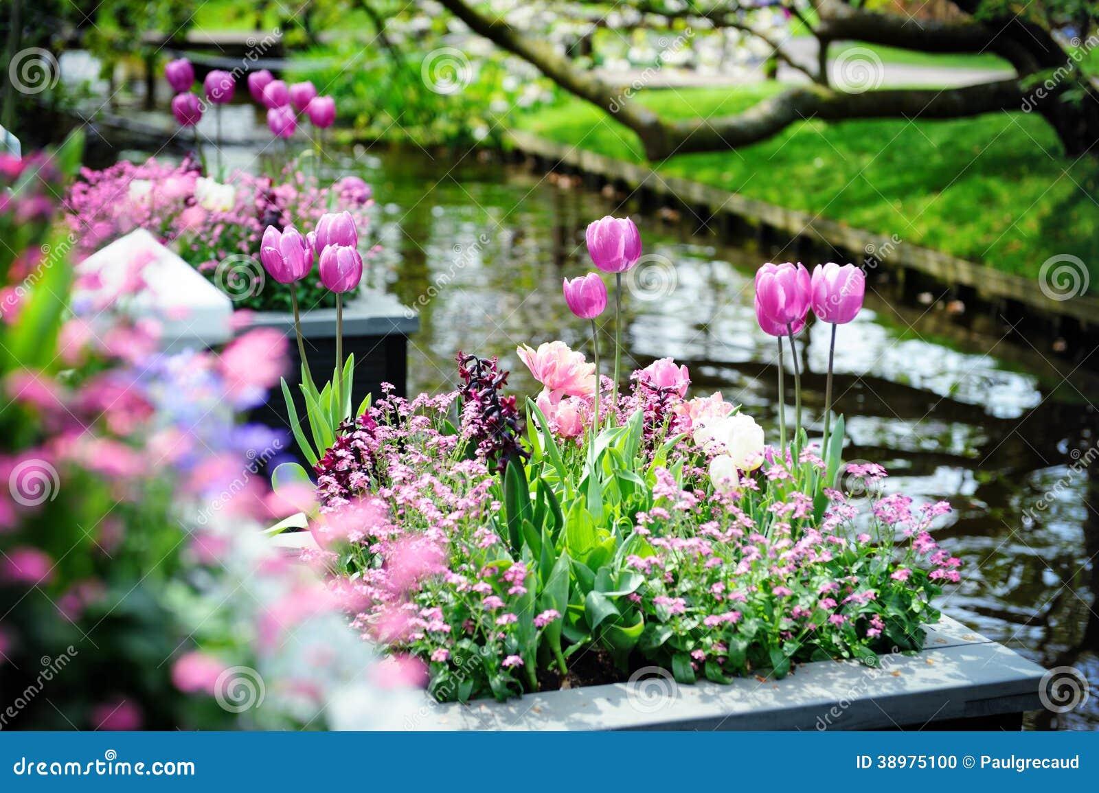 Image gallery jardines de flores hermosas for Figuras para jardin