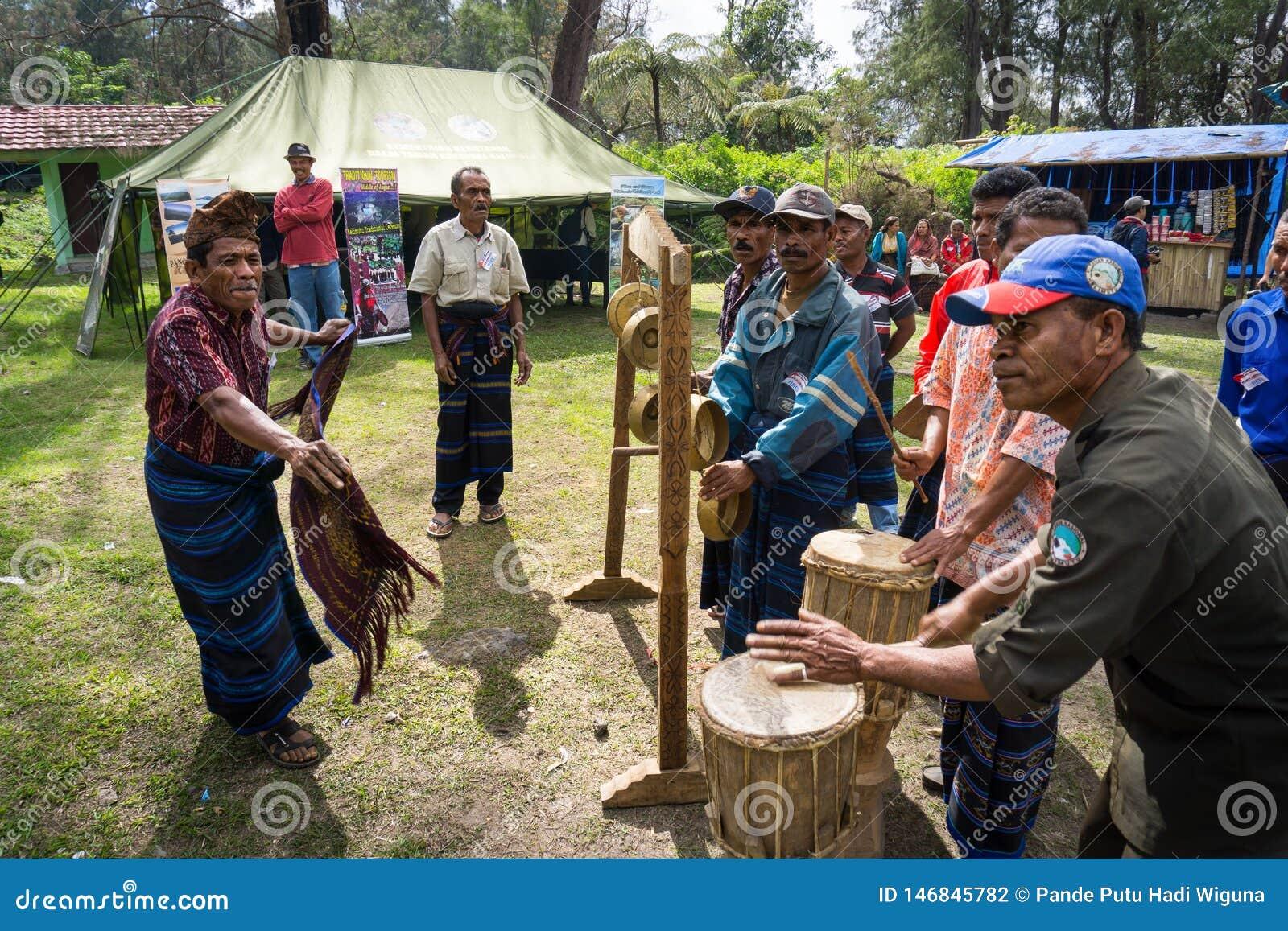 FLORES/INDONESIA-AUGUST 14 2014年:传统舞蹈和乐器从kelimutu区域ende由一个老人跳舞