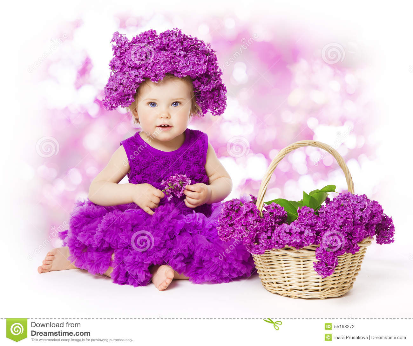 Flores lilás do bebê, criança na flor, ramalhete da criança