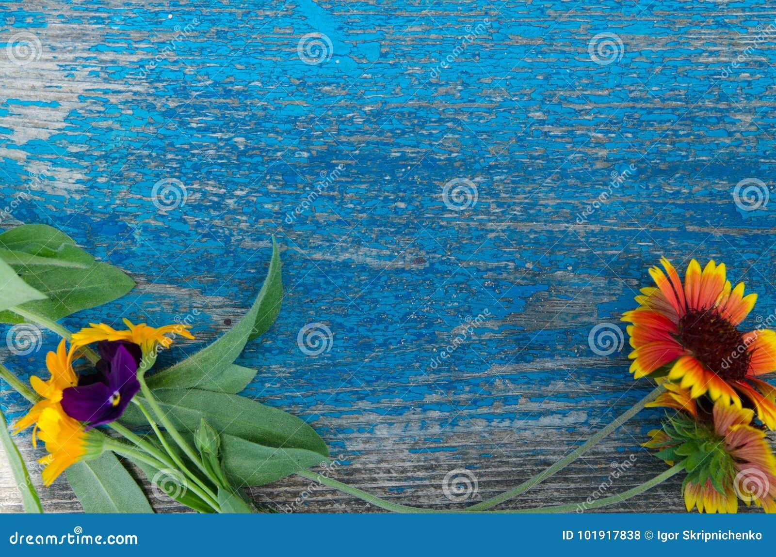 Flores a lo largo del perímetro de un tablero azul de madera, pintado con las grietas