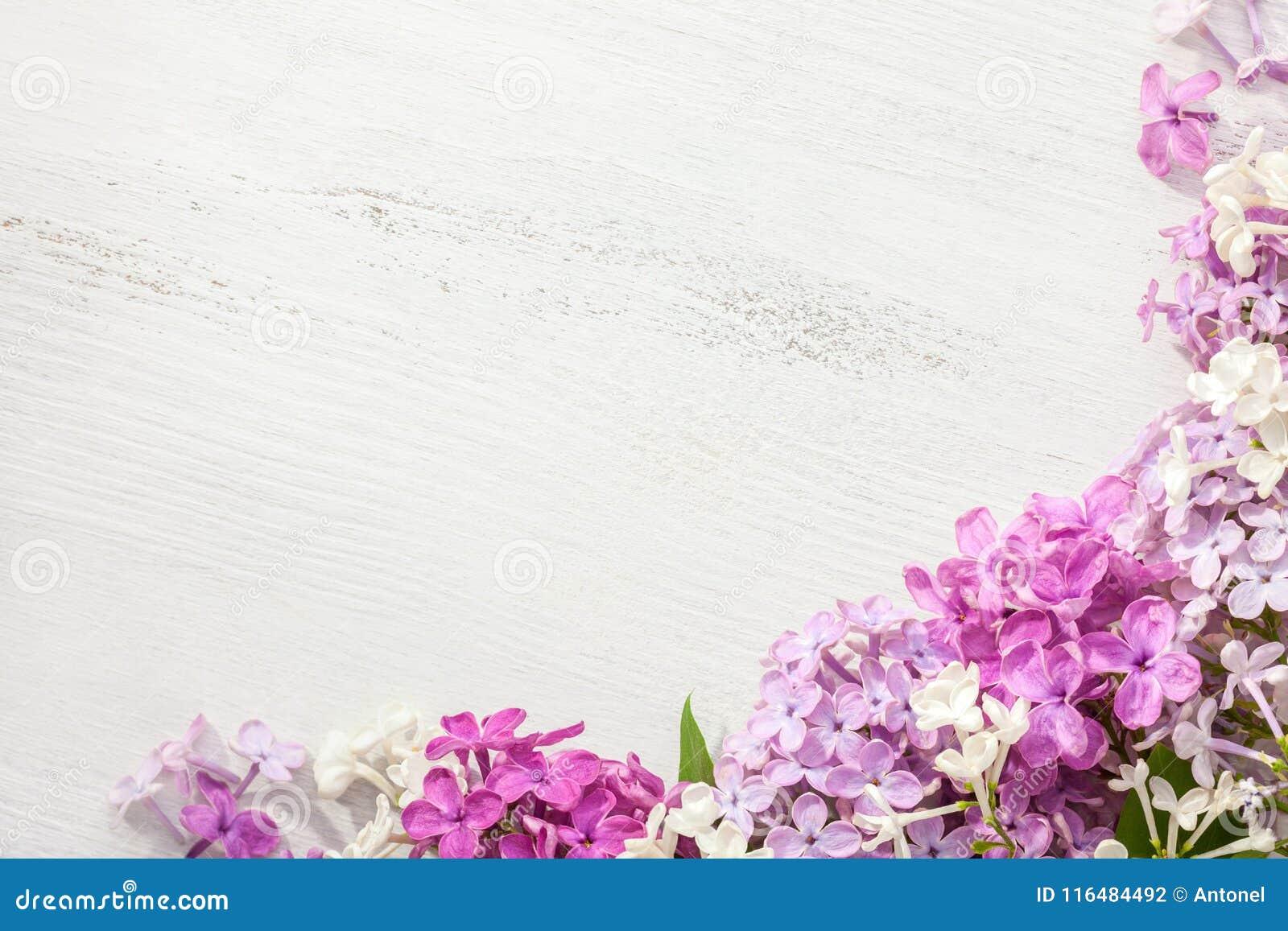 Flores minúsculas de la lila en un viejo fondo de madera Frontera floral rosada