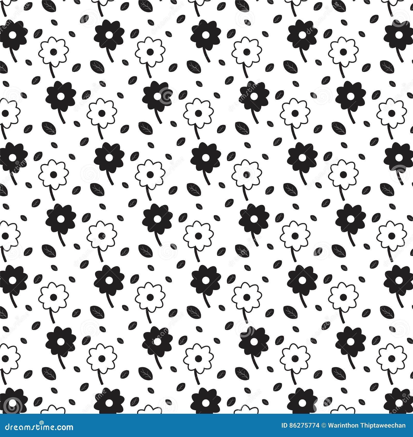 Flores Preto E Branco Com Fundo Preto Do Teste Padrão Das