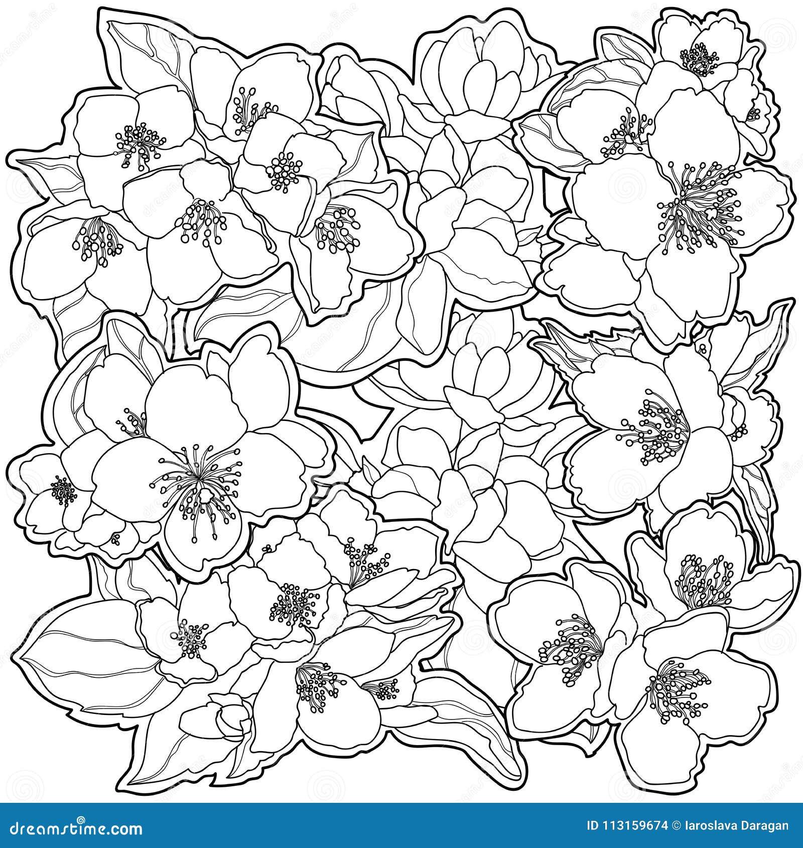 Flores Preto E Branco Delicadas Do Fundo Ilustração Do Vetor