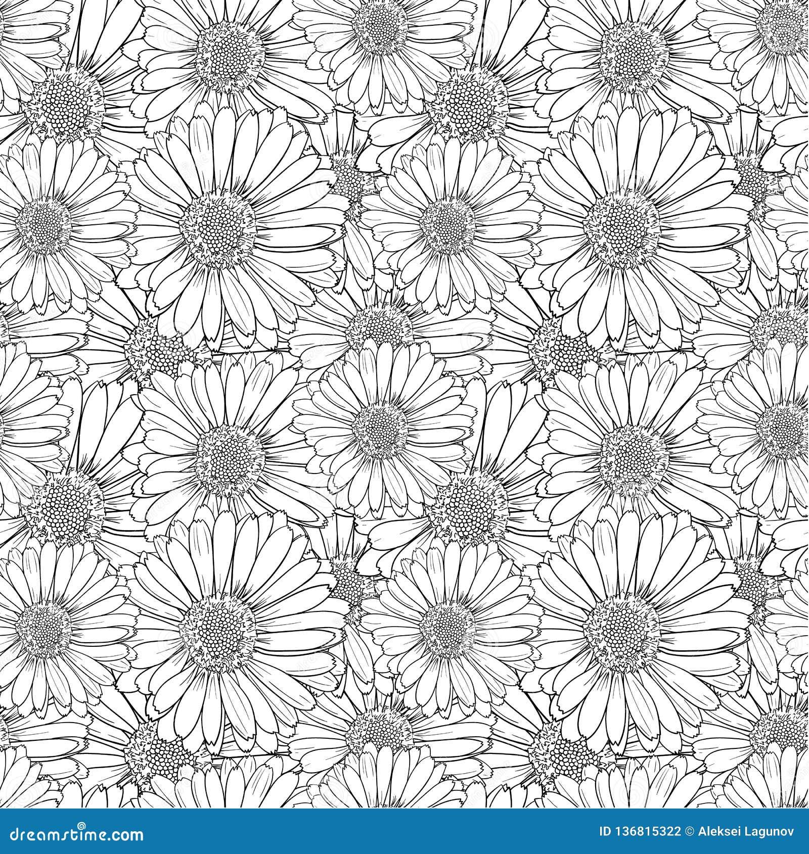 Flores que colorean antiesfuerzas del vector, modelo inconsútil, blanco y negro