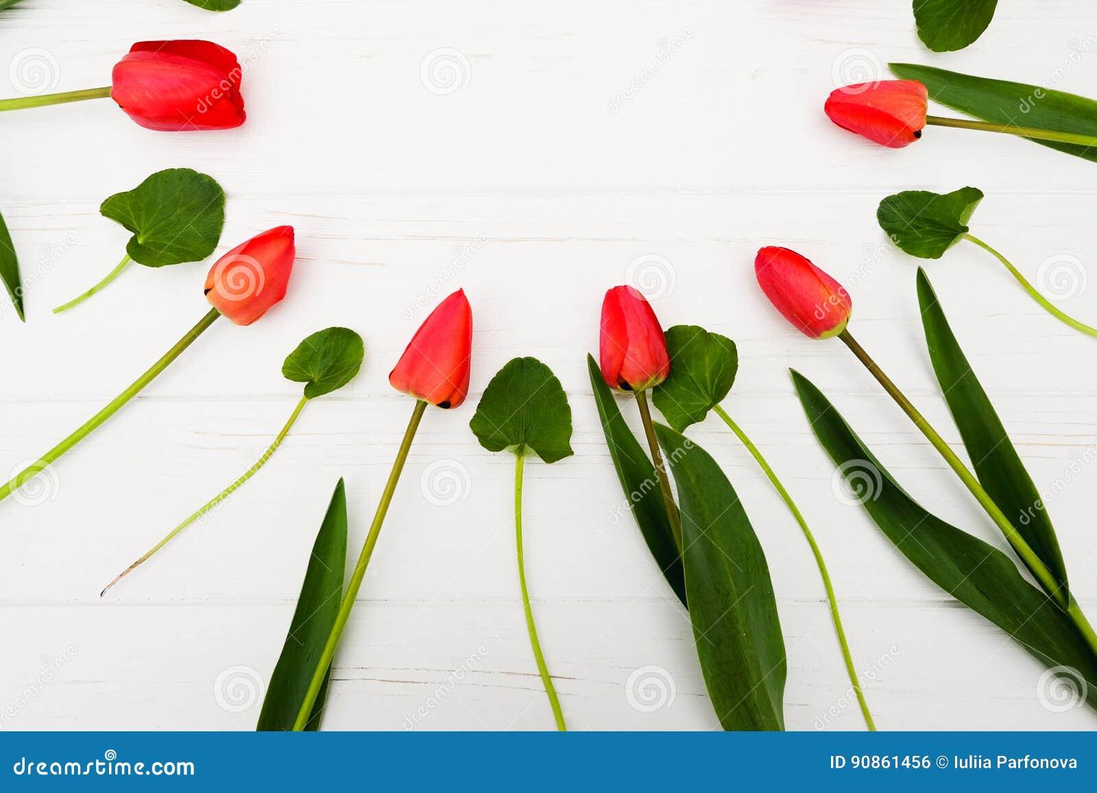 389aaa15b9e8 Flores Rojas Capítulo Con El Tulipán Pascua