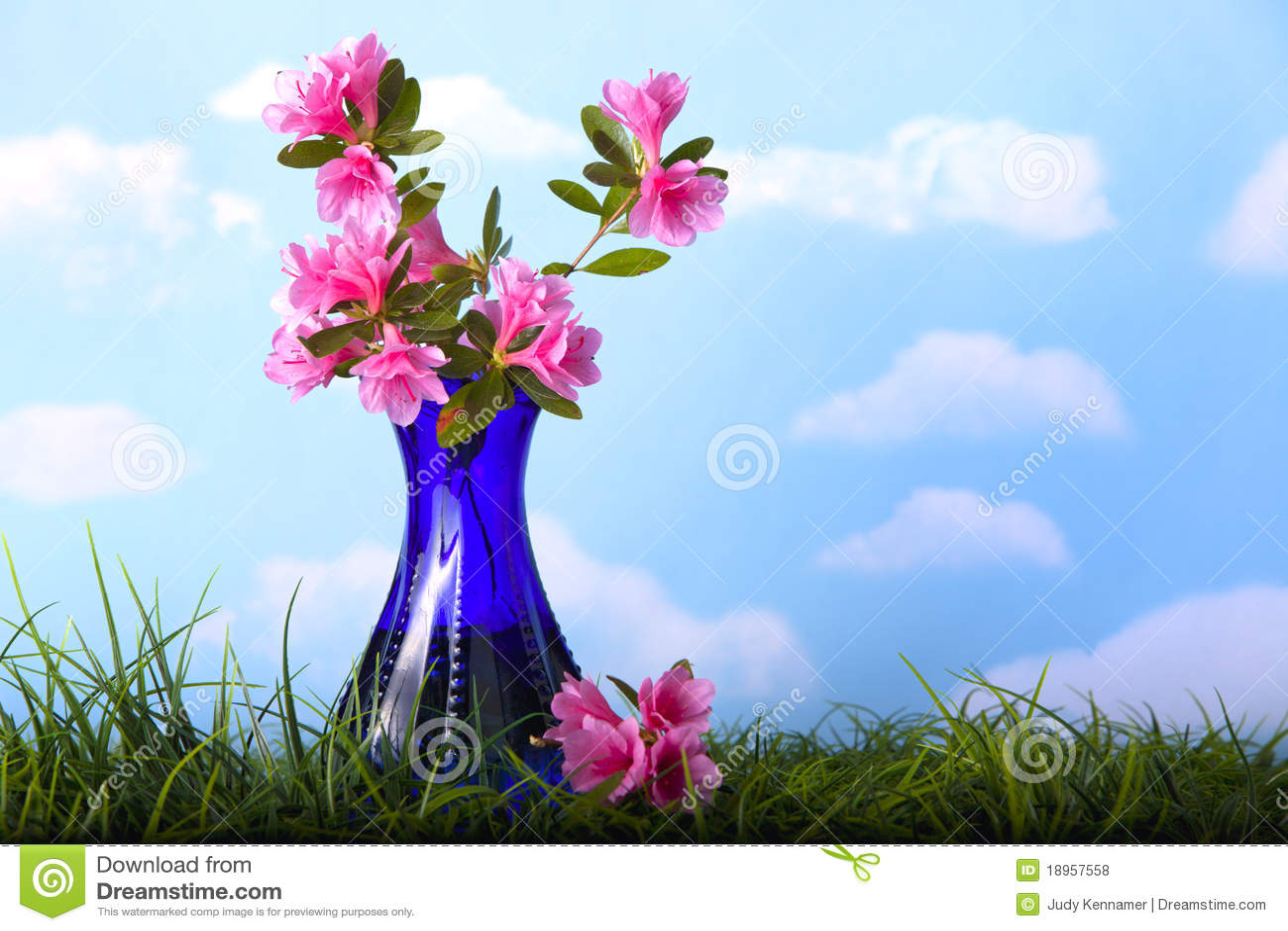 Flores Rosadas De La Azalea En Florero Azul Foto De Archivo Imagen De Azalea Flores 18957558