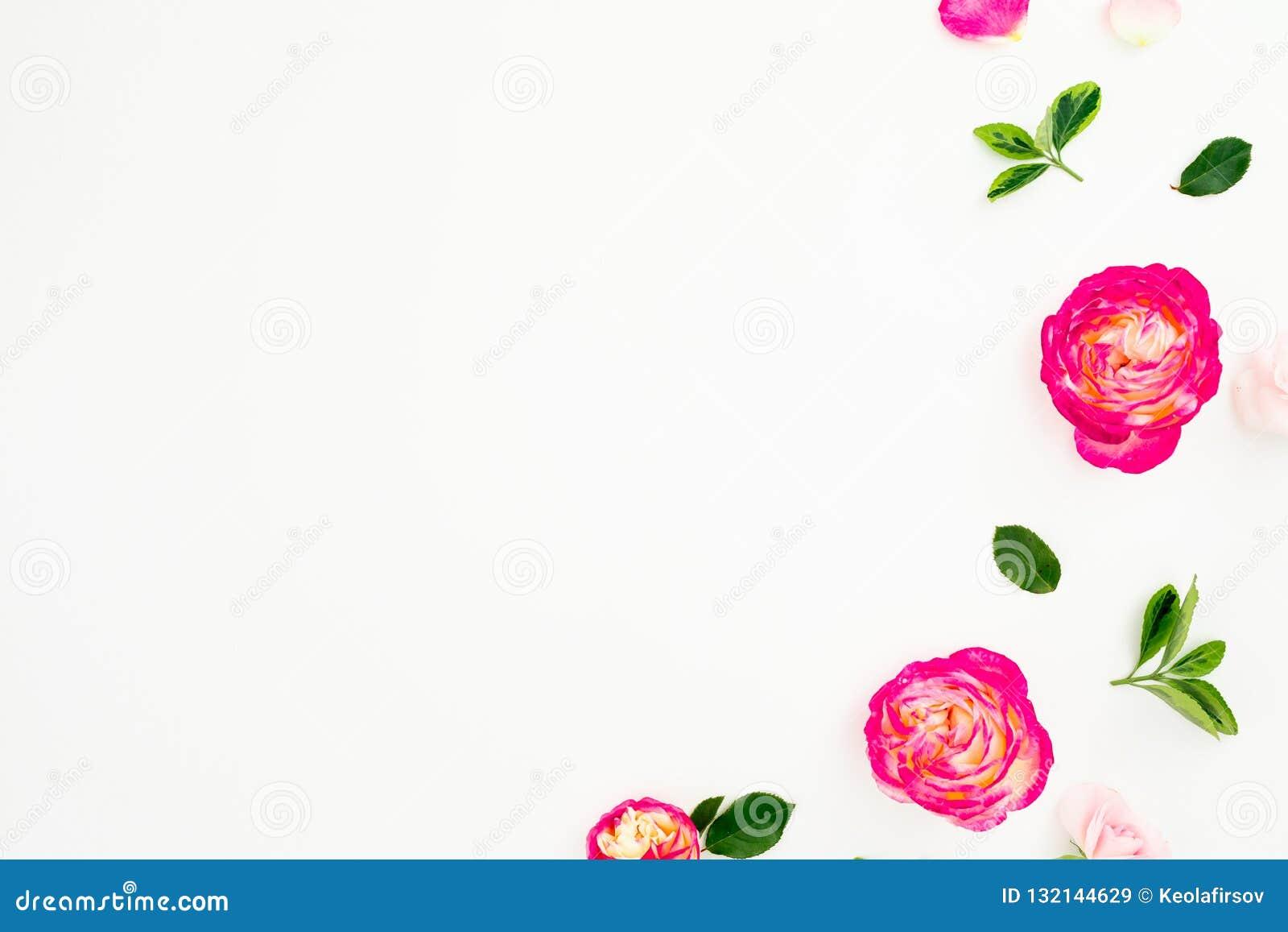 Flores rosadas en colores pastel de las rosas y hojas verdes en el fondo blanco Endecha plana, visión superior Copie el espacio