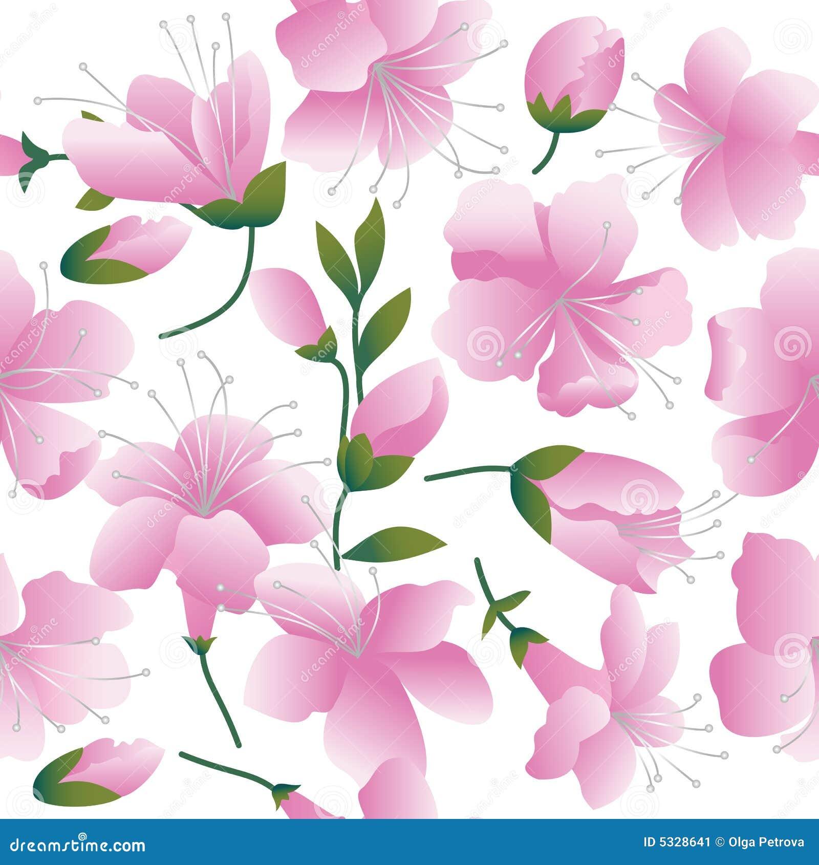 Flores Rosadas En El Fondo Blanco Ilustración Del Vector