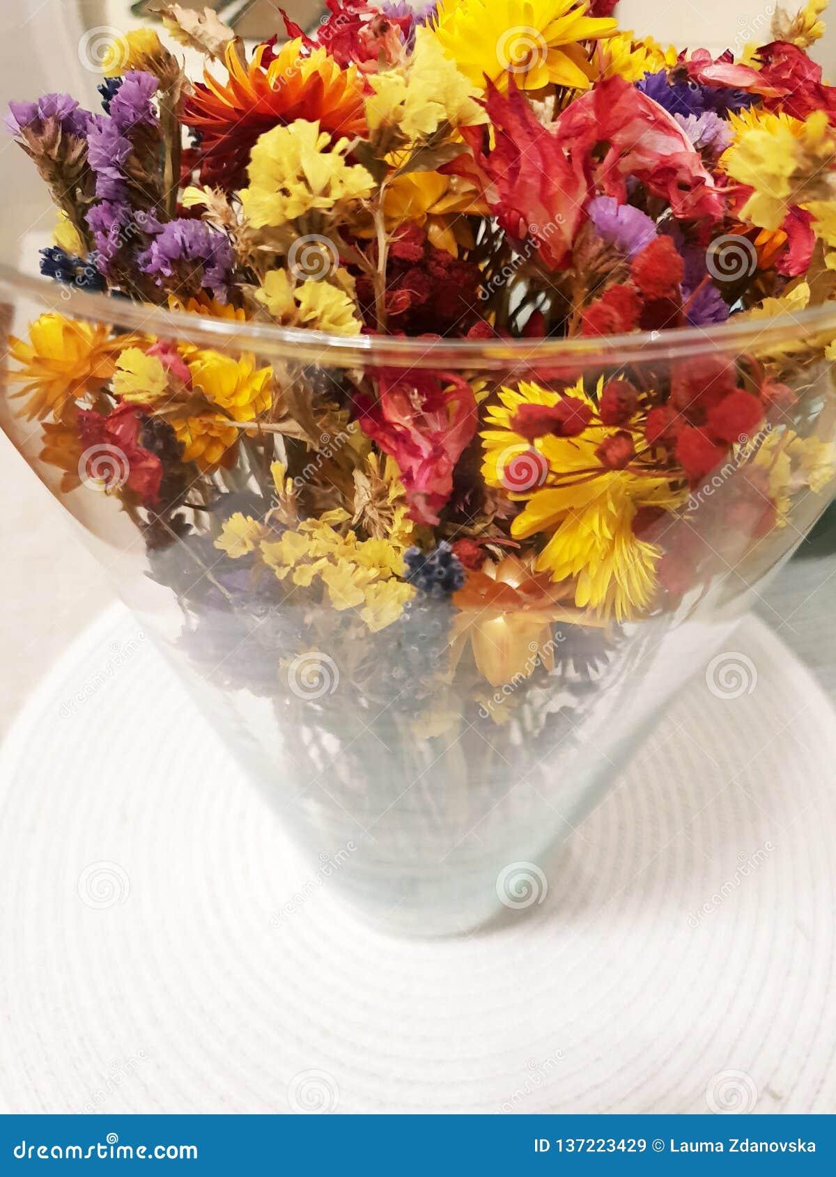 Flores secas coloridas