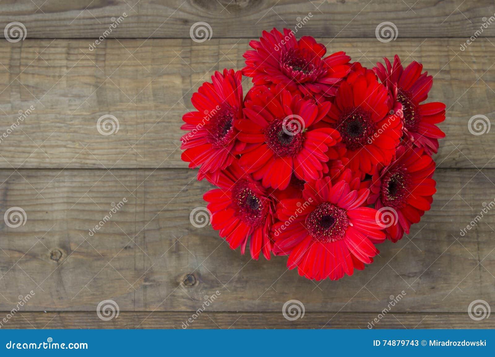 Flores vermelhas do gerbera