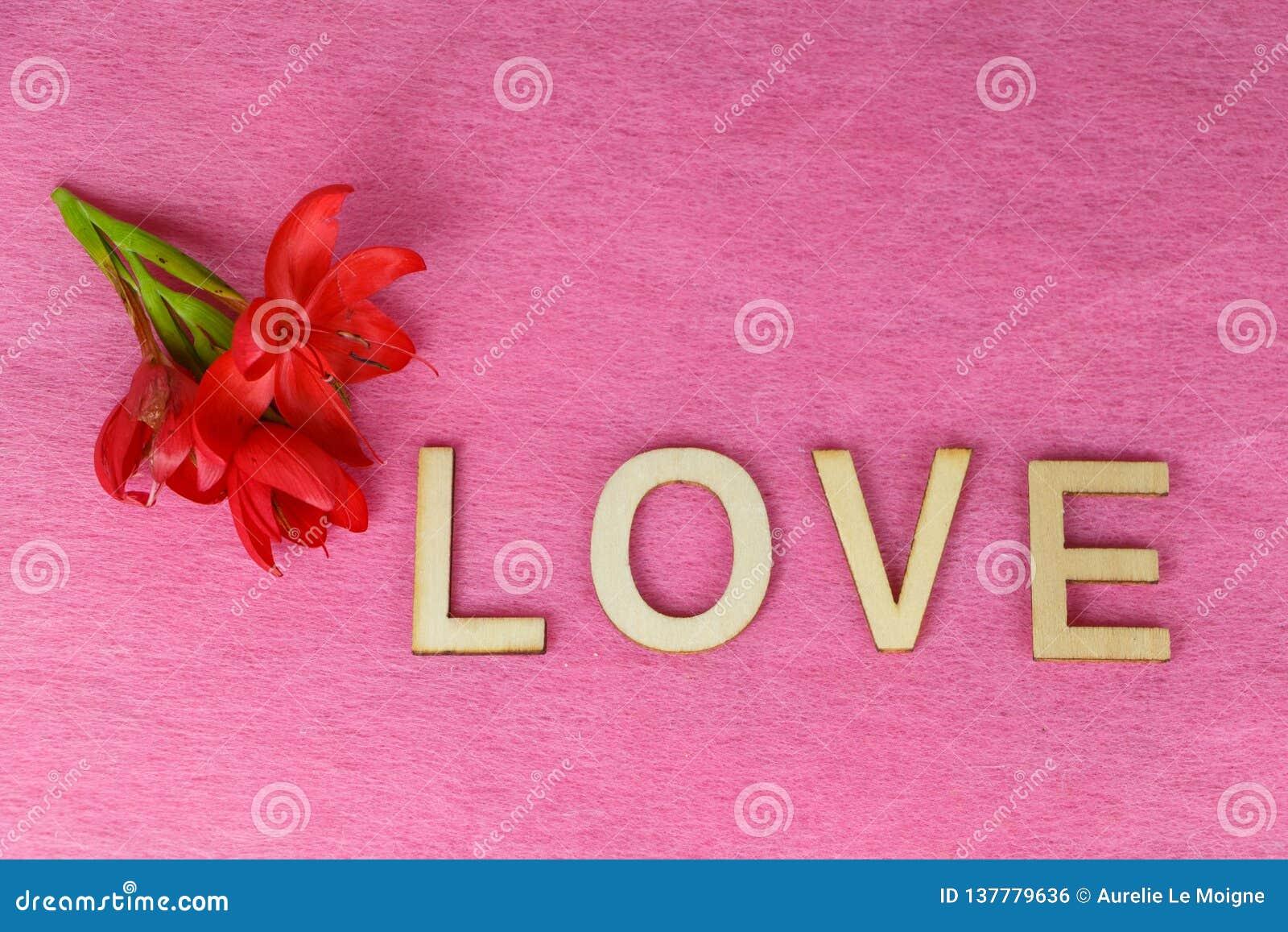 Flores vermelhas e amor