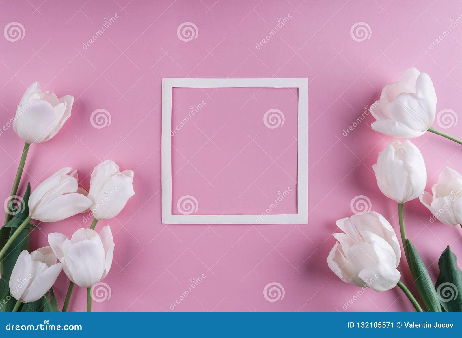 Flores y hoja de papel blancas de los tulipanes sobre fondo rosa claro Marco o fondo del día de tarjetas del día de San Valentín