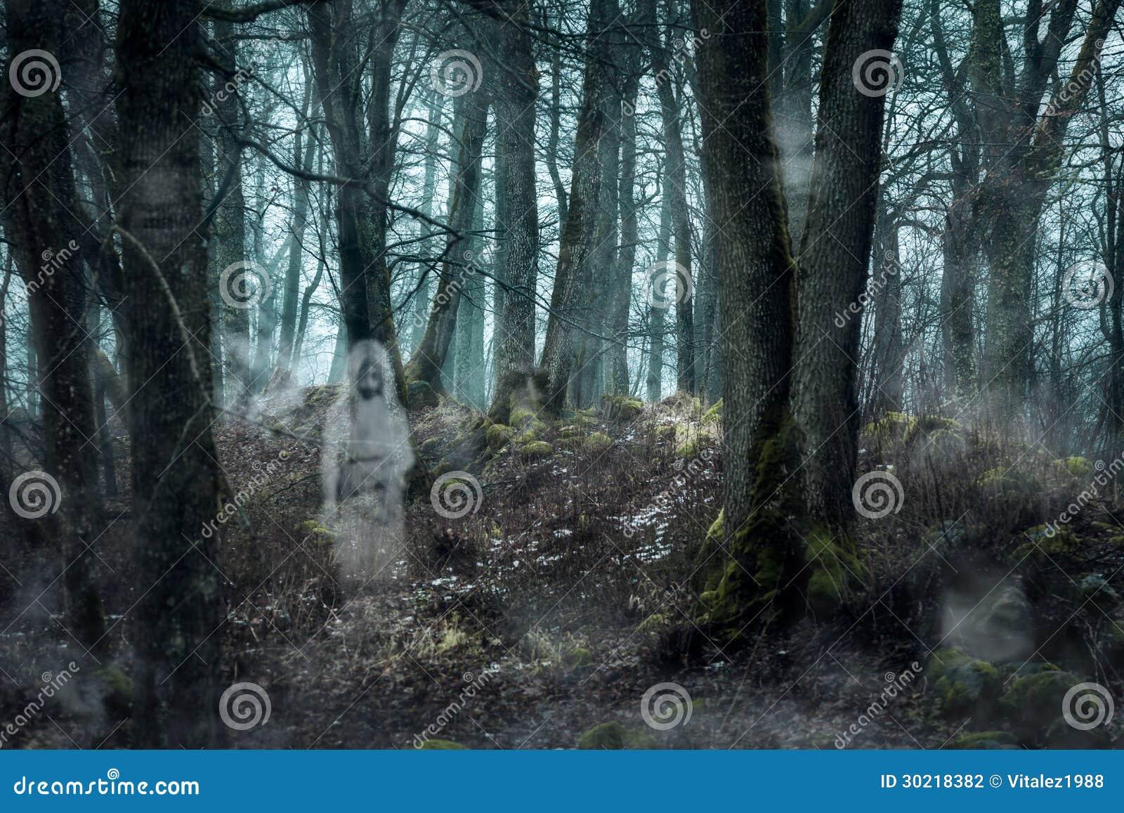 Floresta com os fantasmas