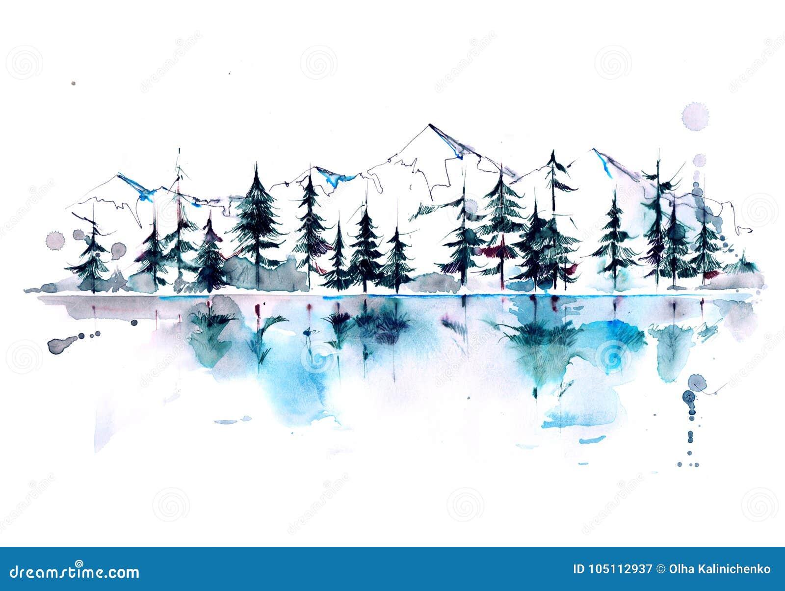 Floresta da montanha