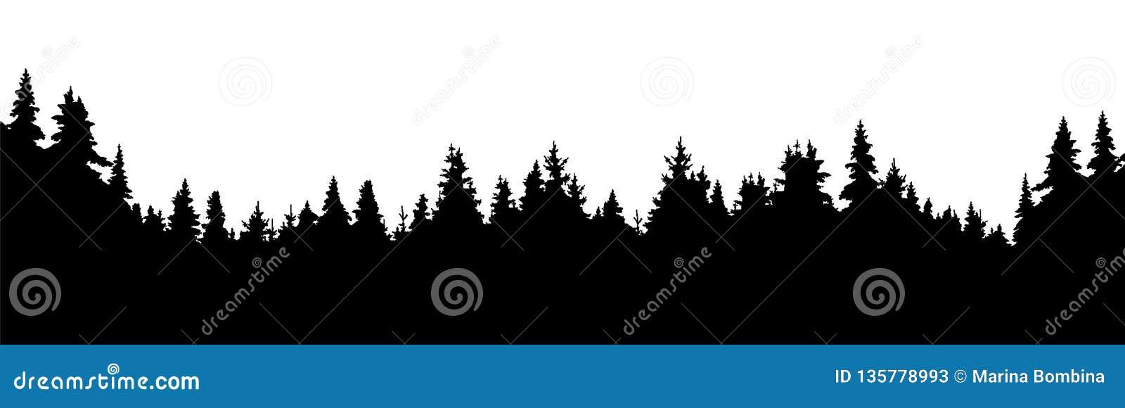 Floresta de árvores coníferas, fundo do vetor da silhueta