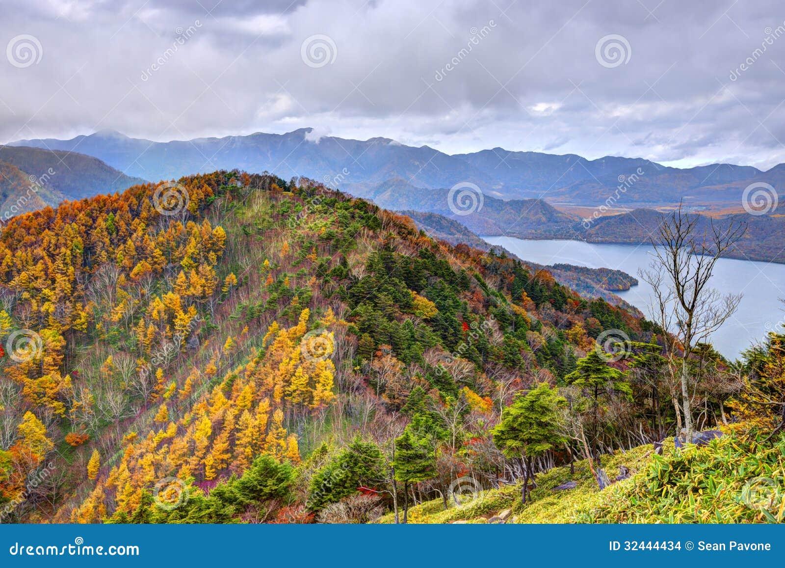 Floresta nacional de Nikko em Japão