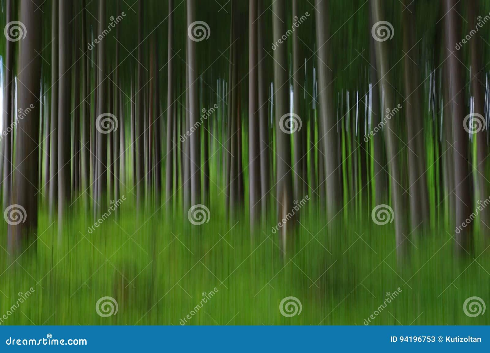 Floresta obscura abstrata