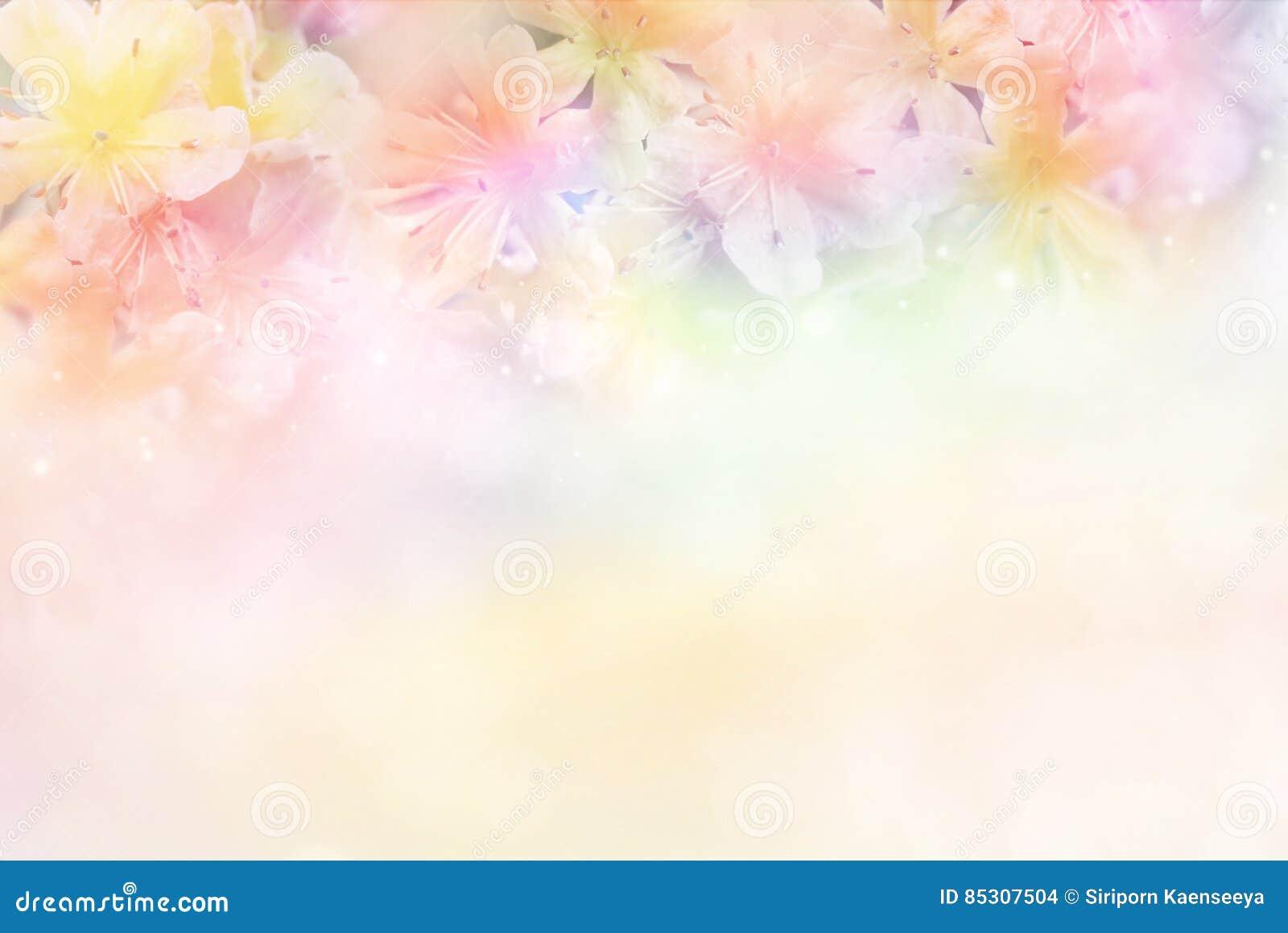 Florezca El Fondo Suave En El Tono En Colores Pastel Para
