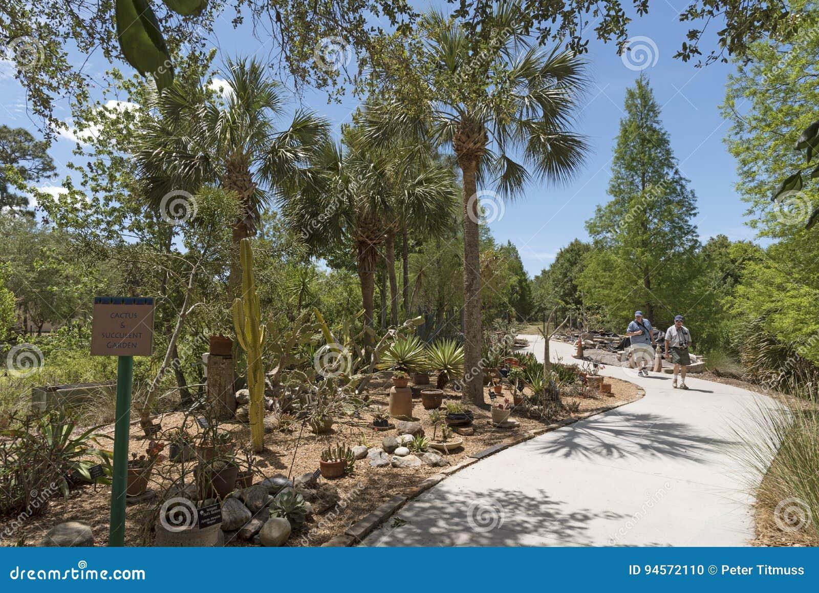 Florida Botanic Garden USA editorial image. Image of succulent ...