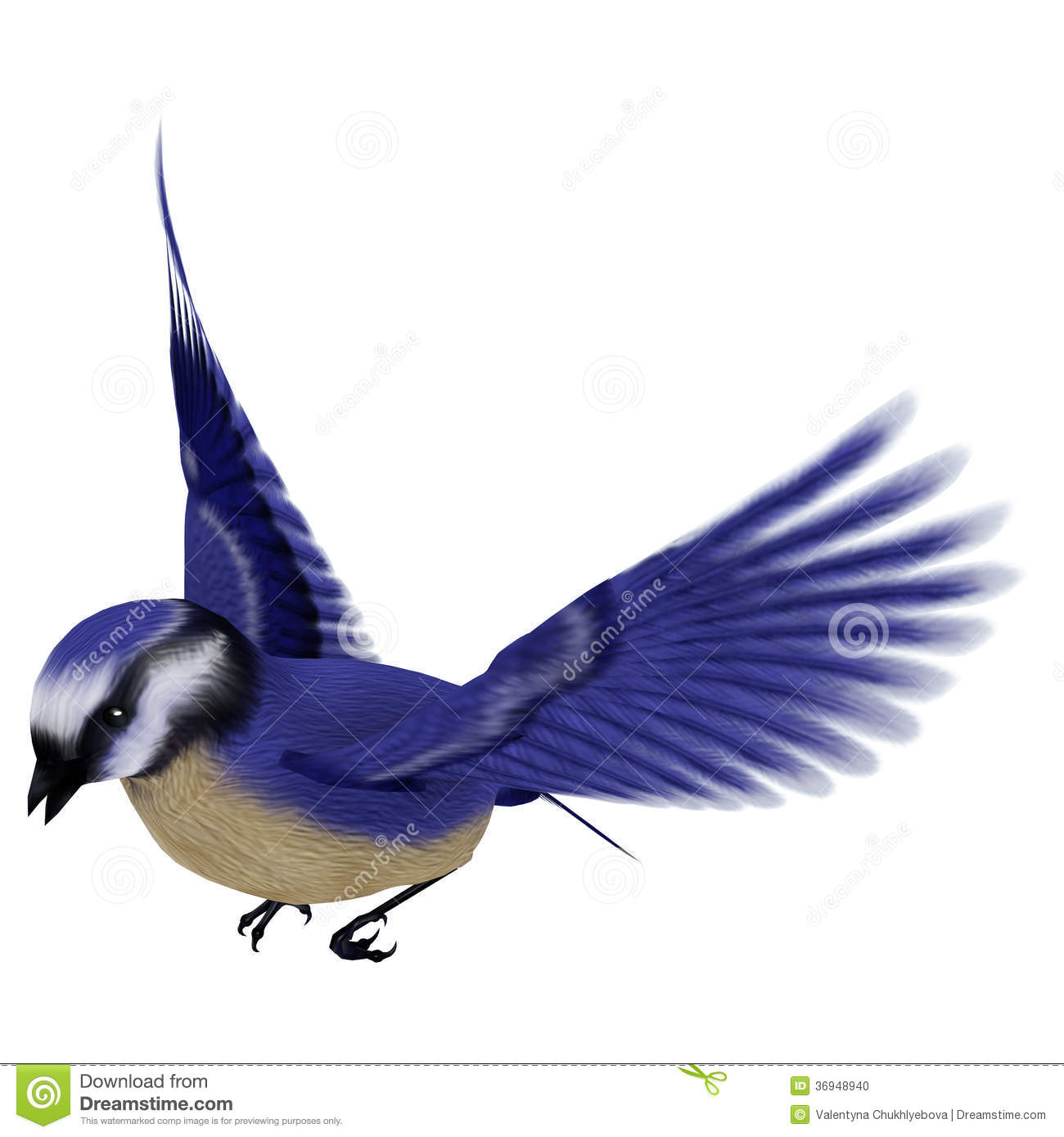 how to draw a blue jay flying