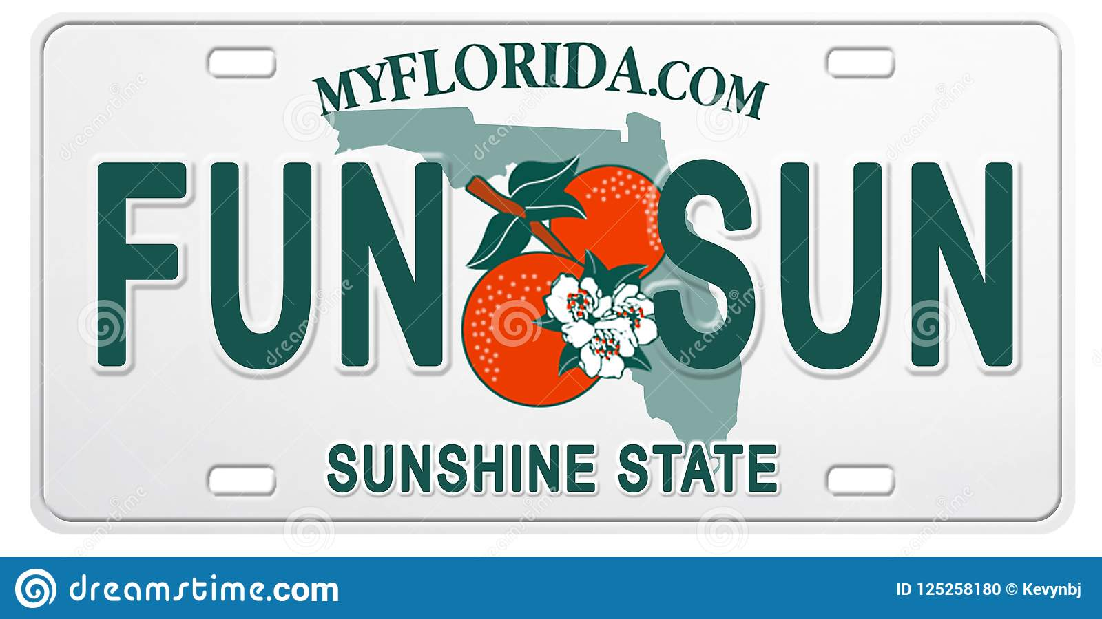 Florida License Plate with Text Fun and Sun