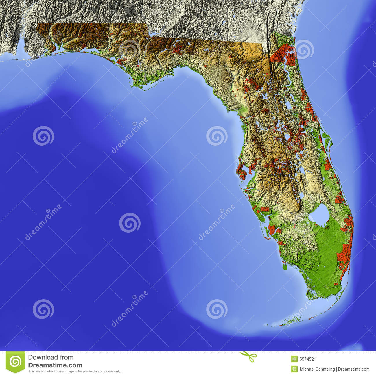 Florida Shaded Relief Map Stock Illustration Image Of Continent - Florida elevation map