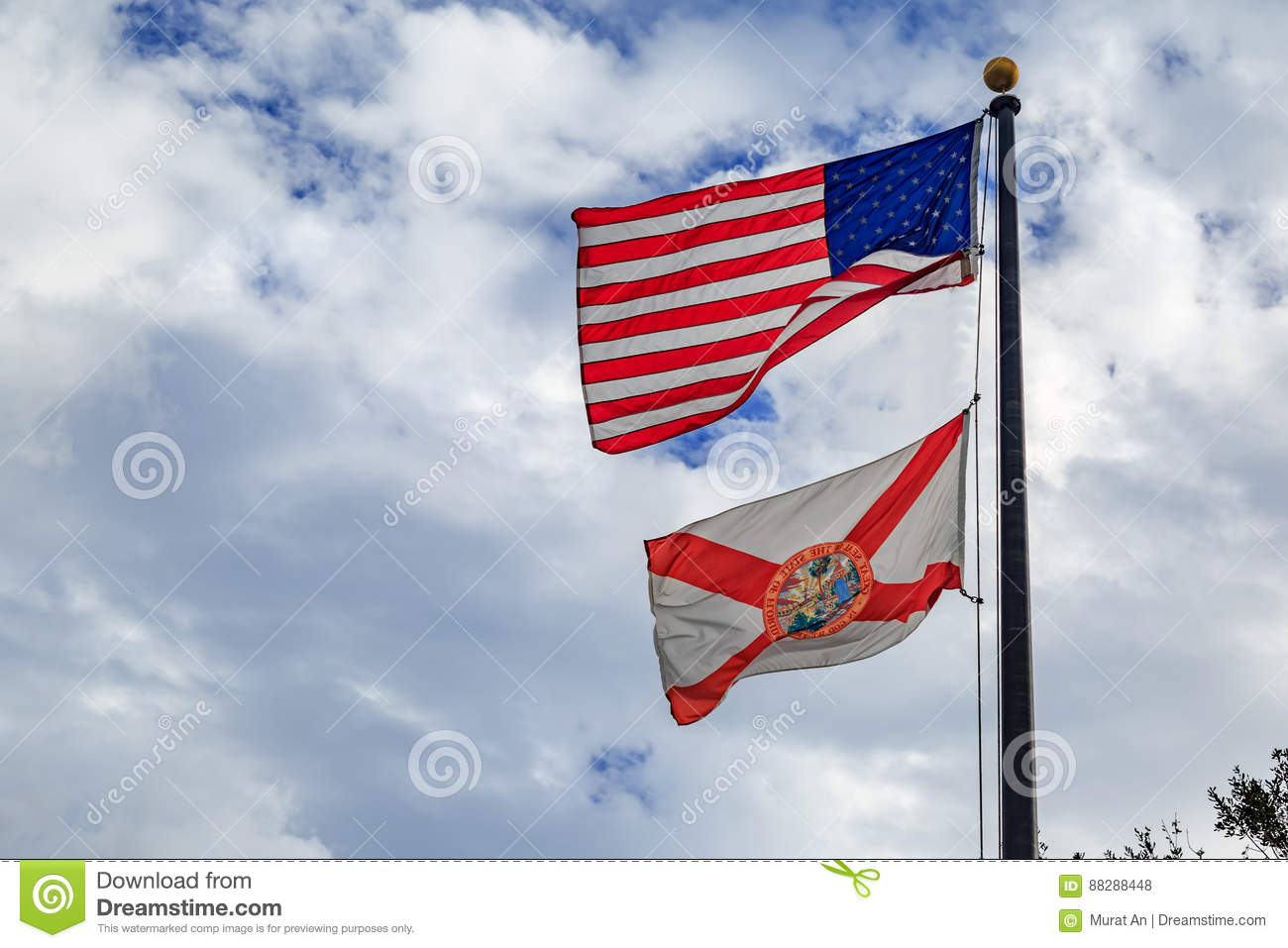Florida state flag with american flag