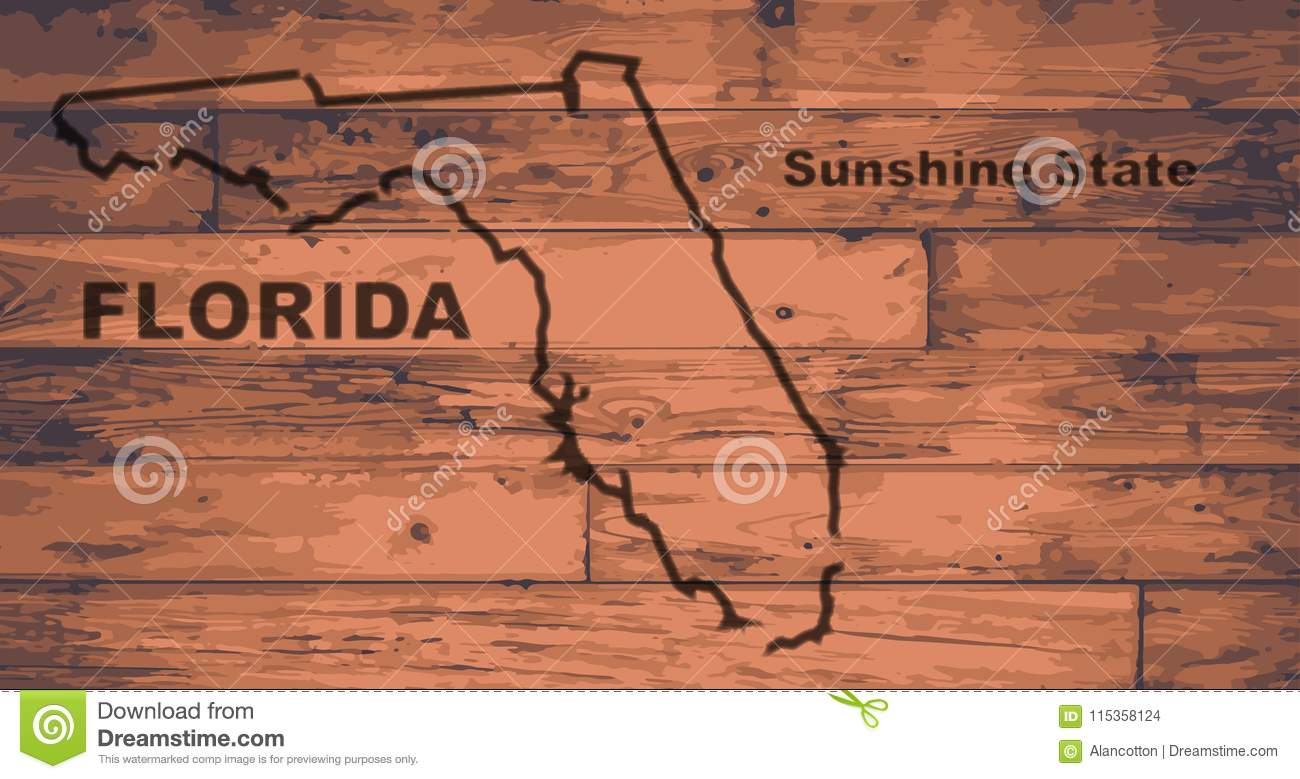 Florida Map Outline.Florida Map Brand Stock Vector Illustration Of Gold 115358124