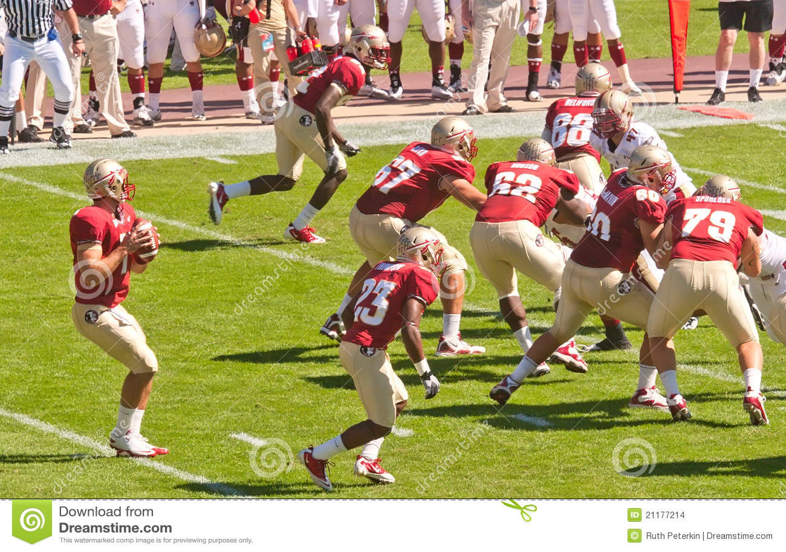 Florida State Seminoles Quarterback in Action