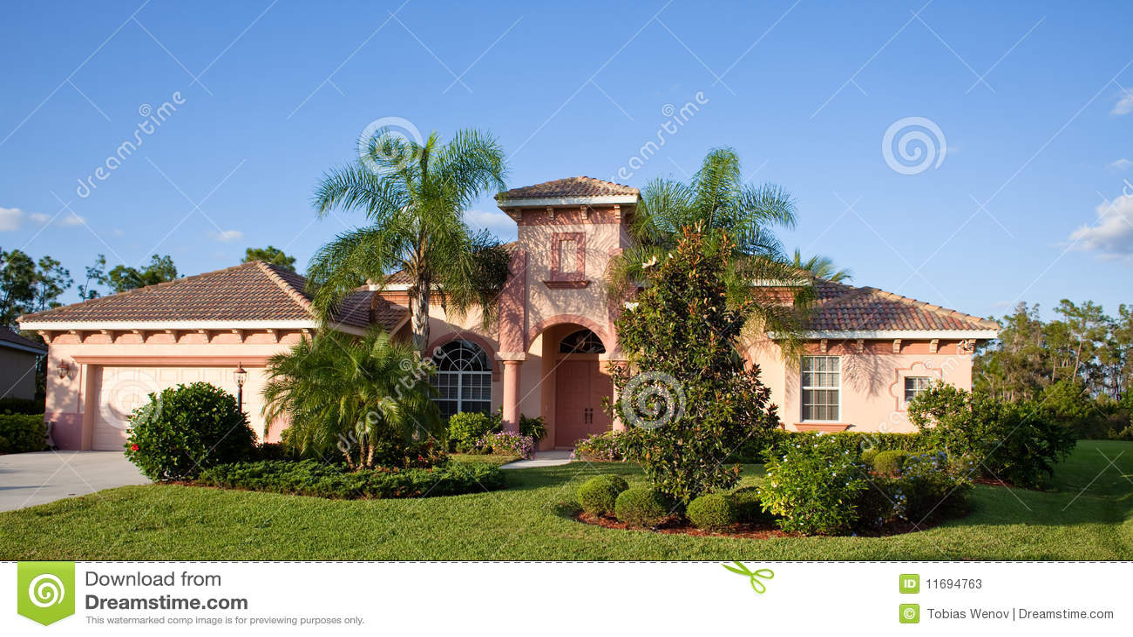 Florida tropikalny domowy wielki