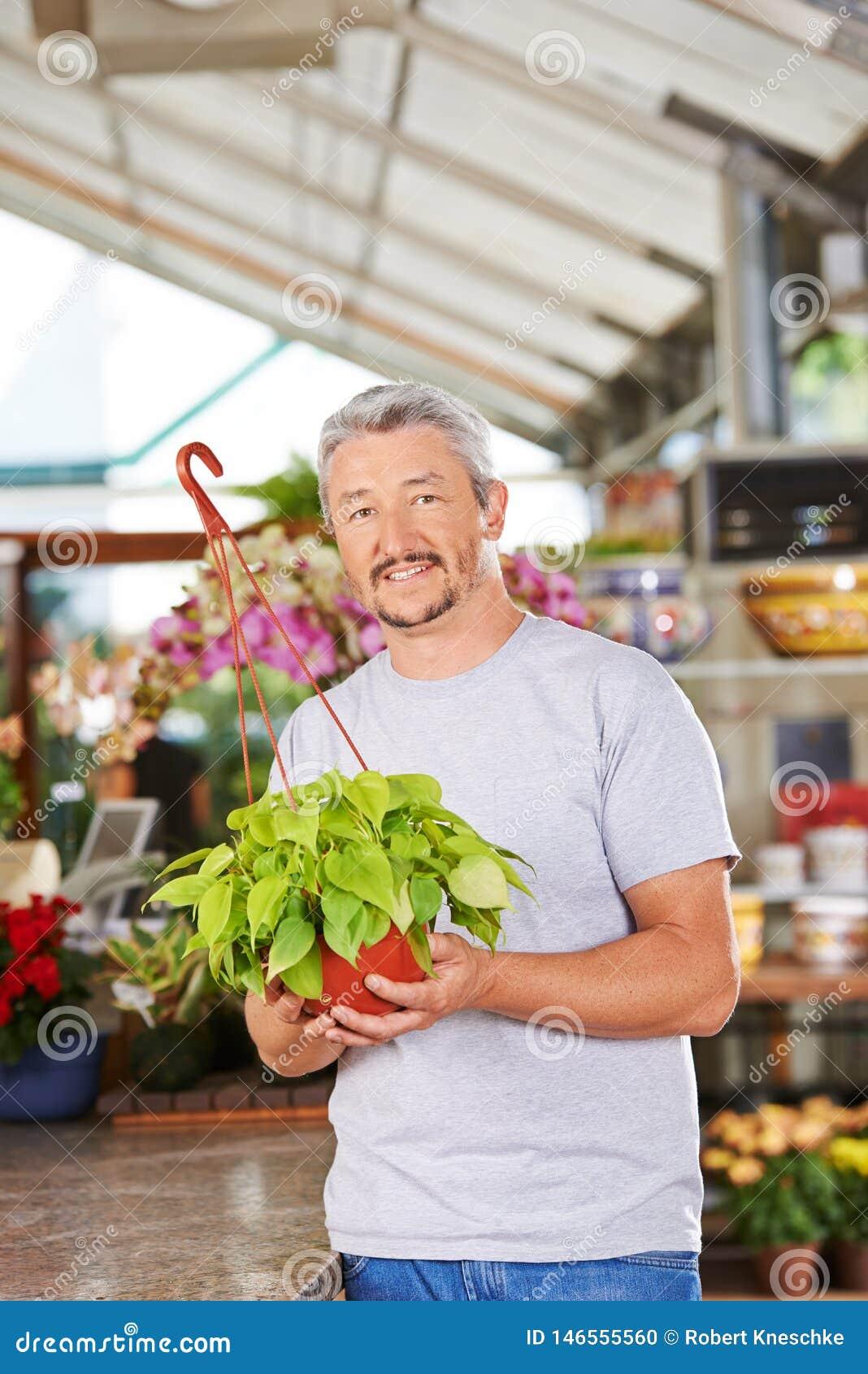 Florista en la floristería con el Philodendron