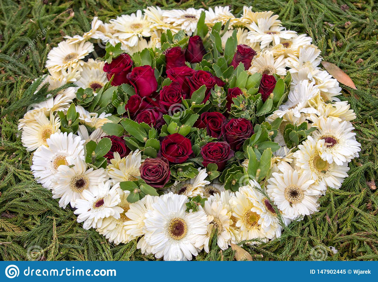 Floristic διακόσμηση ομορφιάς με τα ζωηρόχρωμα τροπικά λουλούδια