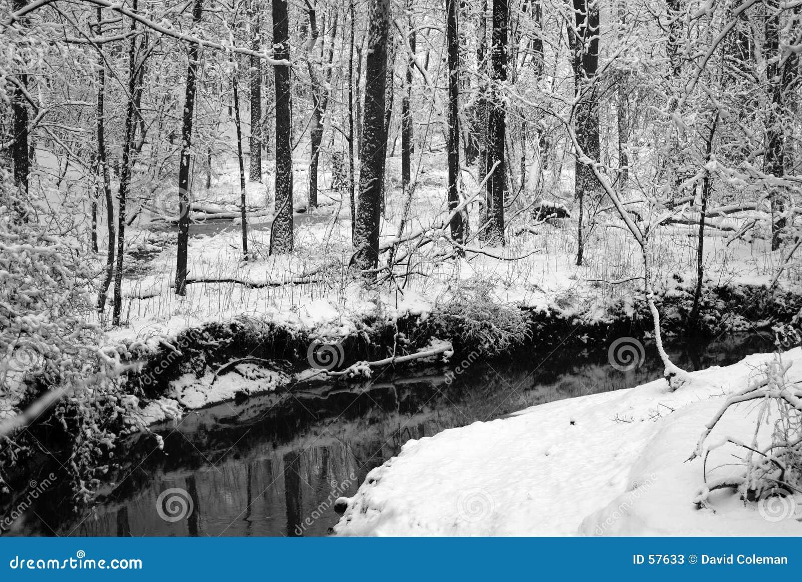 Download Flot de l'hiver image stock. Image du ruisselet, fleuve - 57633