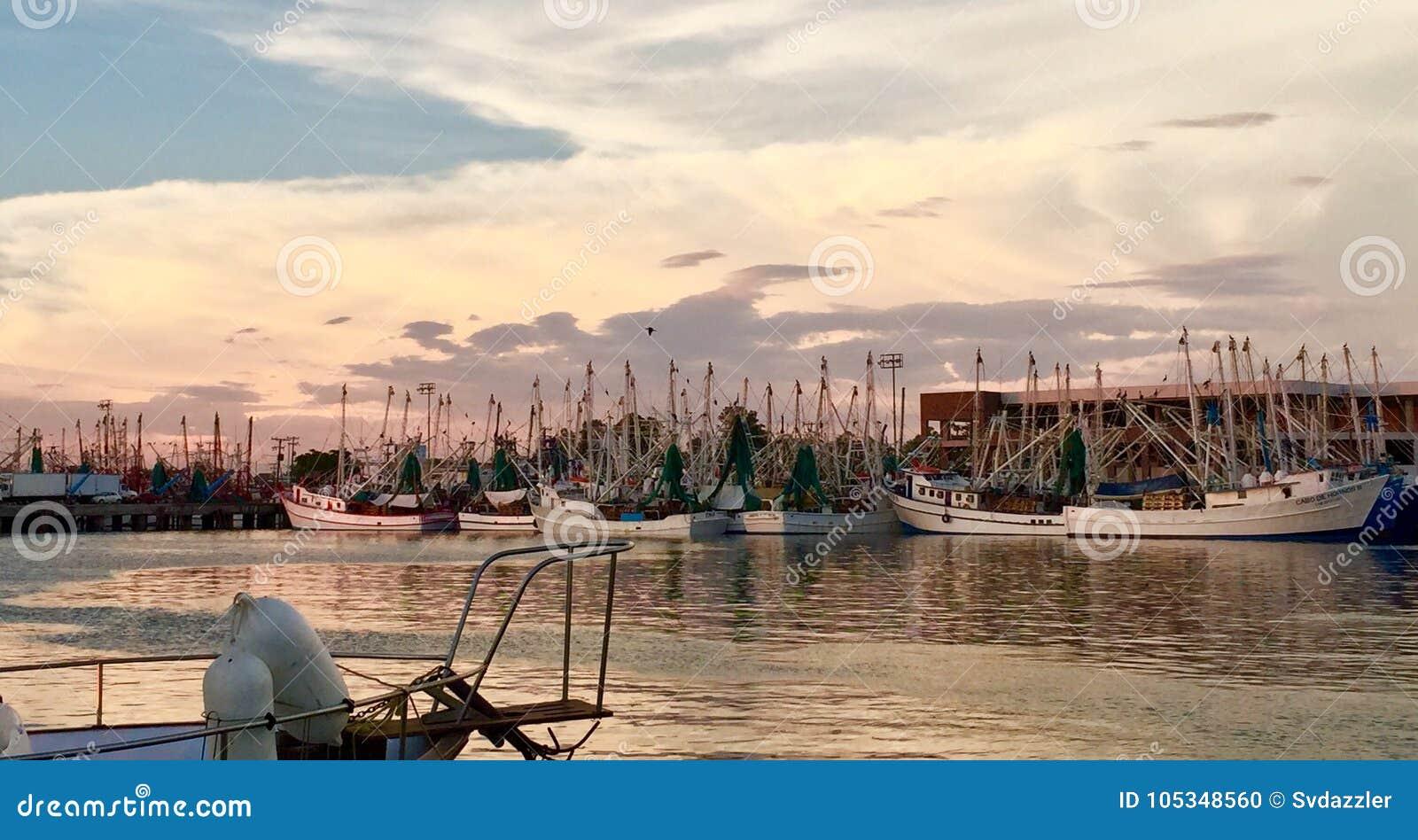 Flota pesquera del barco del camarón