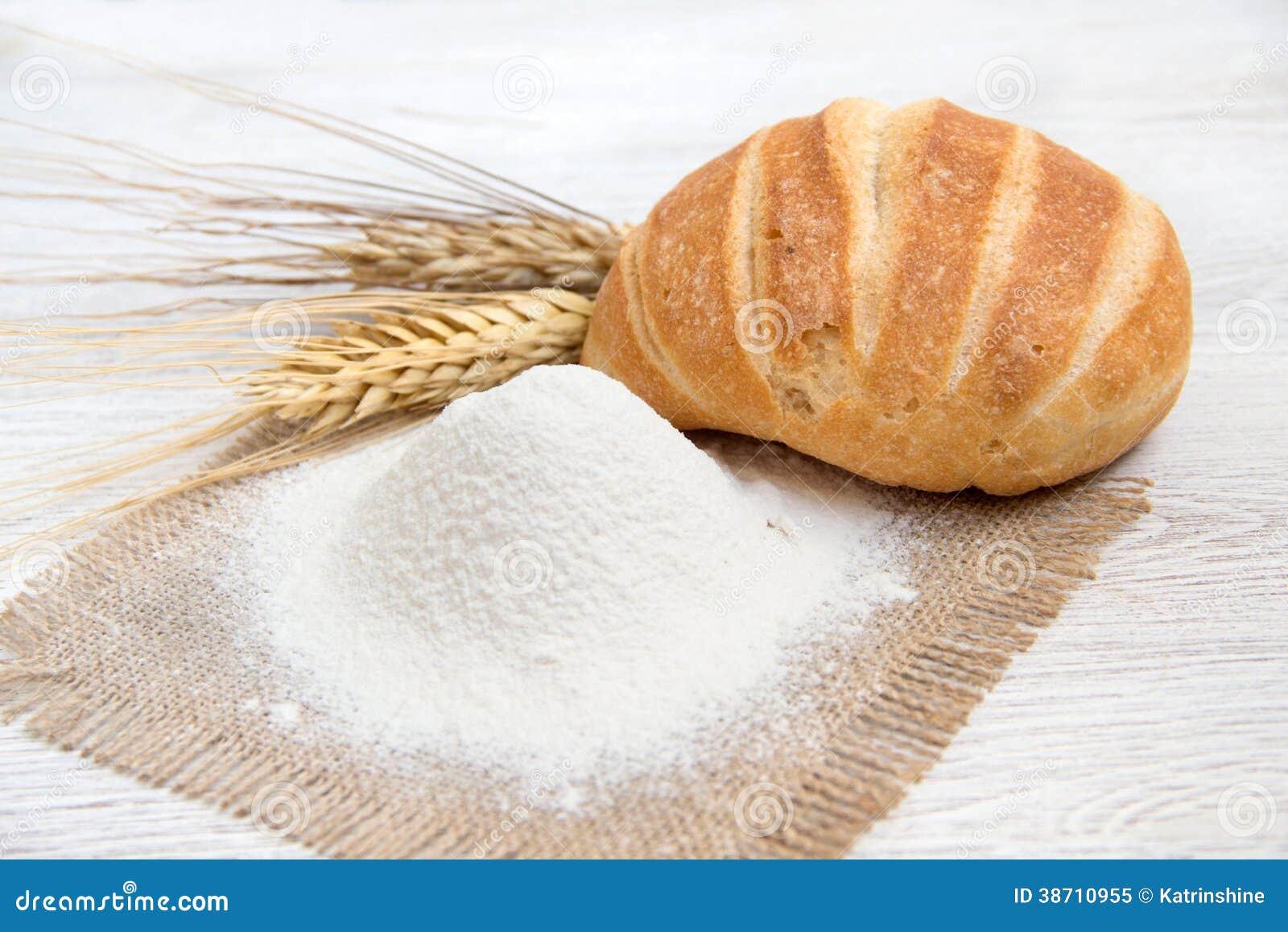 Wheat flour business plan