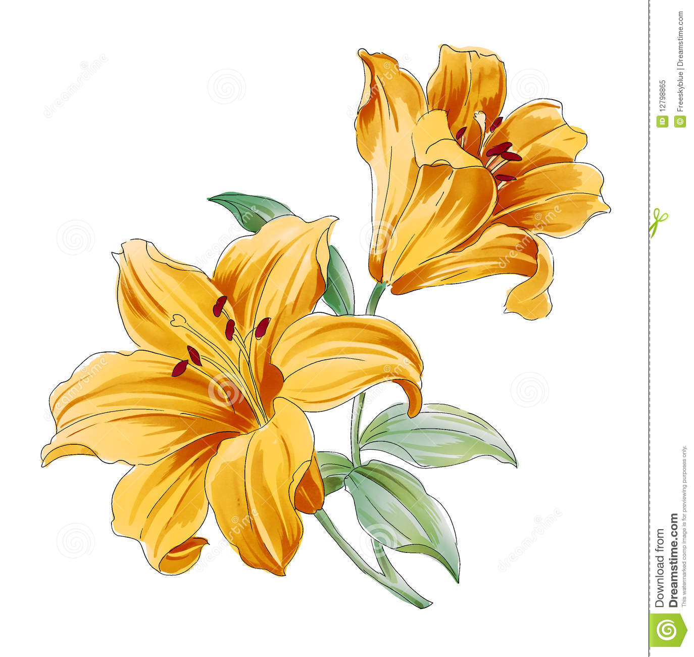 Drawing Of Beautiful Yellow Flowers With Leaves