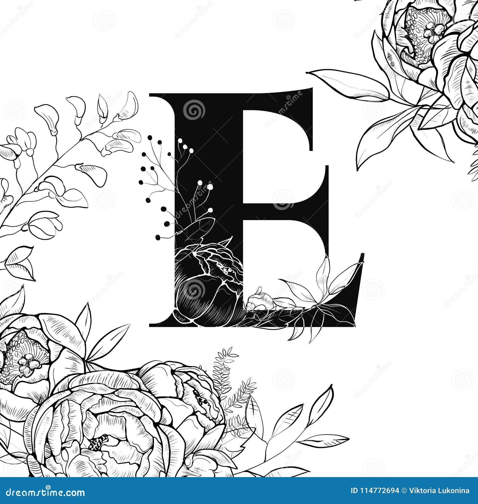 Flower Alphabet Letter E Pattern Stock Vector Illustration Of