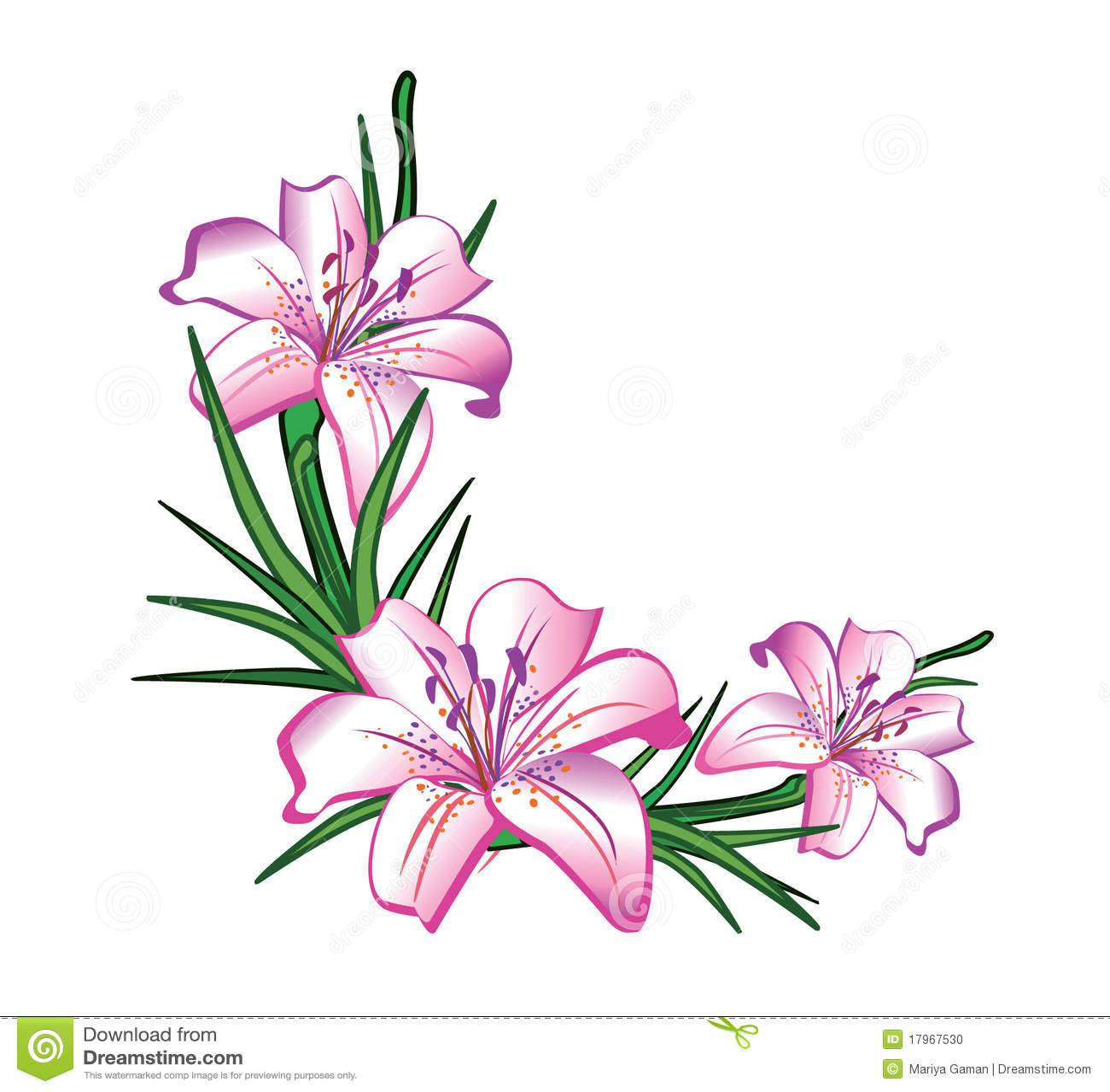 Flower Arrangement Stock Vector Illustration Of Flowerbed 17967530