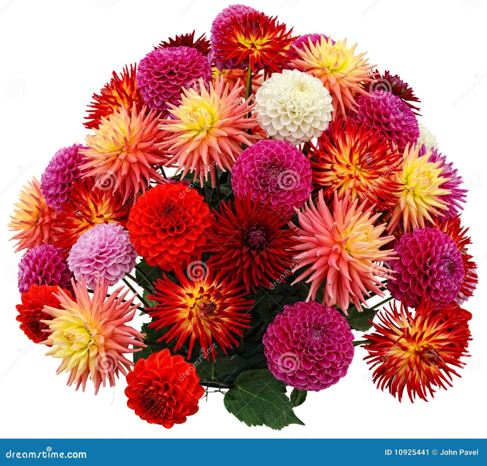 Dahlia Flower Arrangements