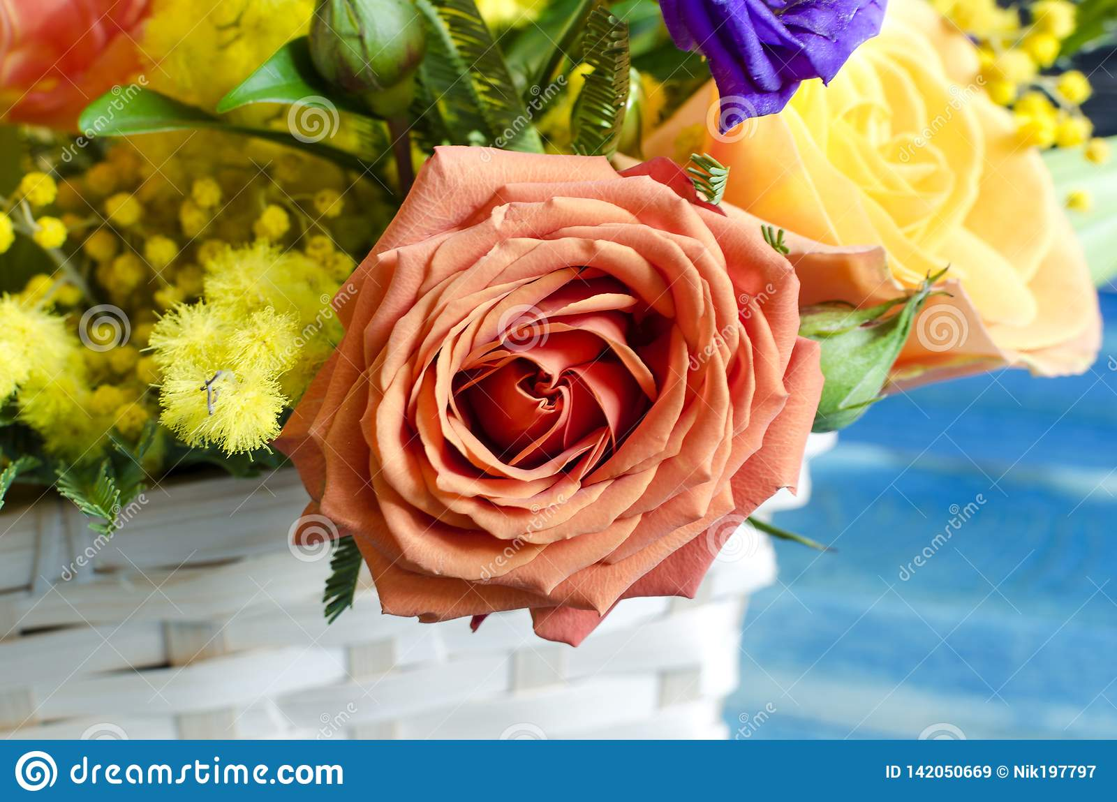 Flower Arrangement Close Up Of Fresh Flowers Of Red Yellow Blue Orange Flowers In A Wicker Basket Stock Image Image Of Green Yellow 142050669