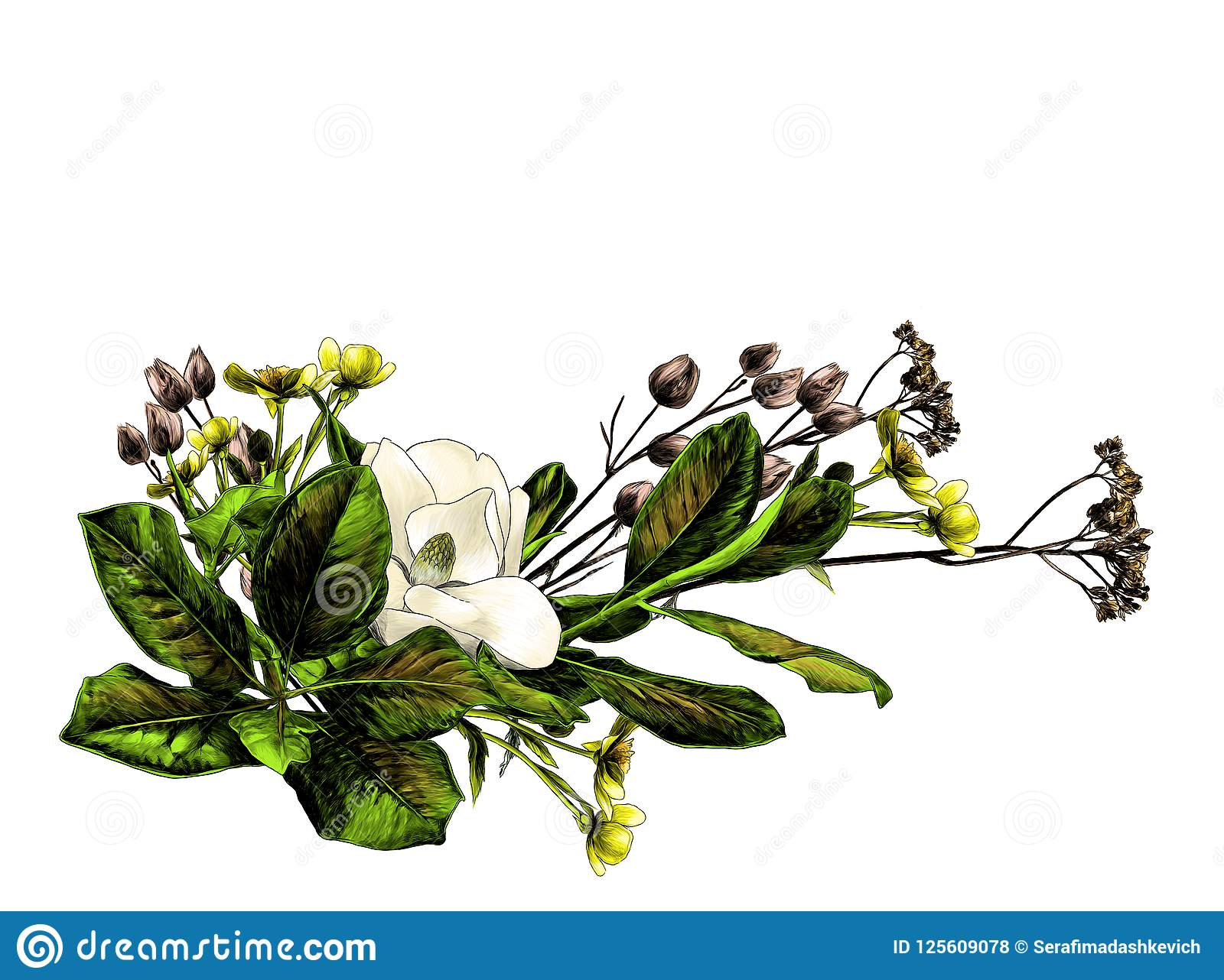 Flower Arrangement Of Magnolia Branches And Dry Grass Stock Vector Illustration Of Branch Graphics 125609078