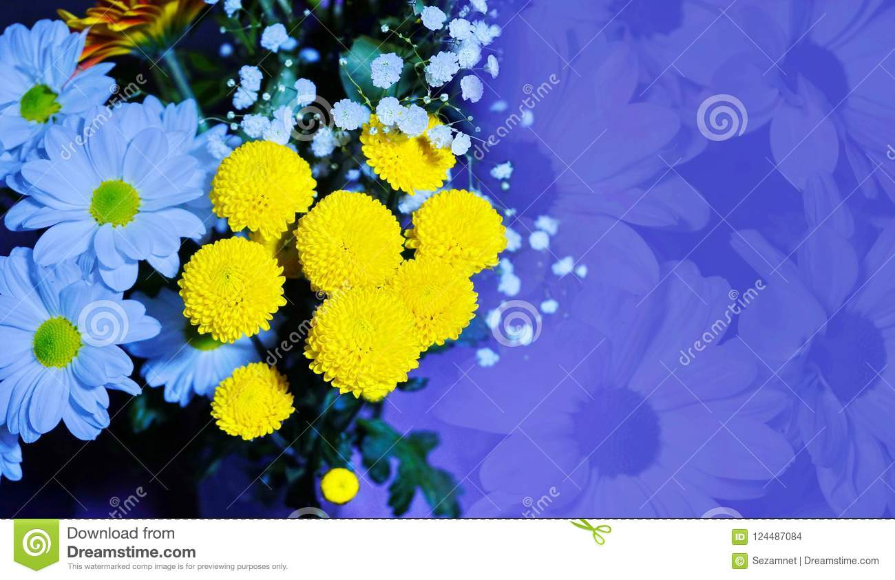 Flower Arrangement Of White Daisies And Yellow Flowers Golden Ba