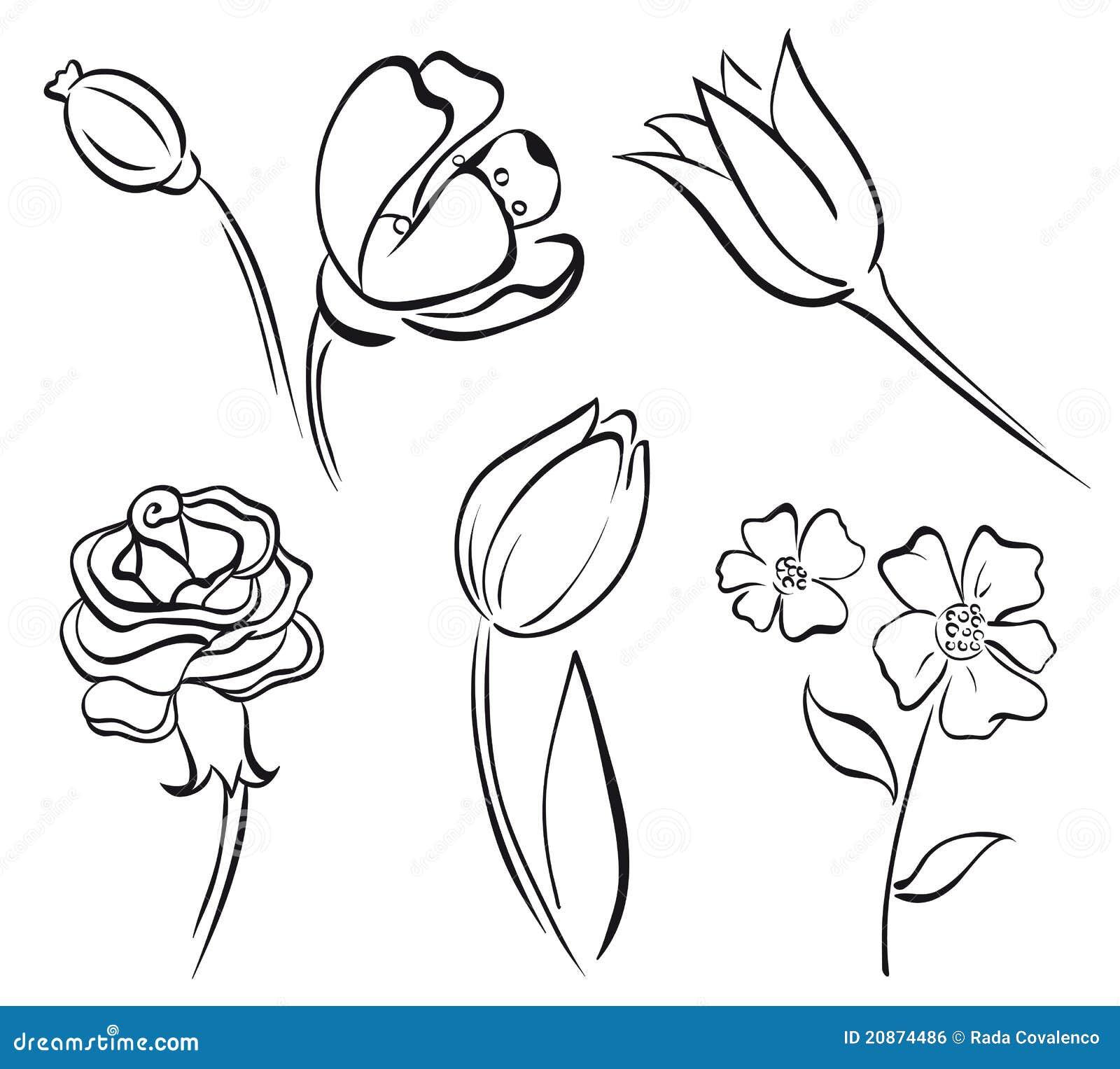 Flower Line Art Images: Flower Art Line Stock Vector. Illustration Of Design